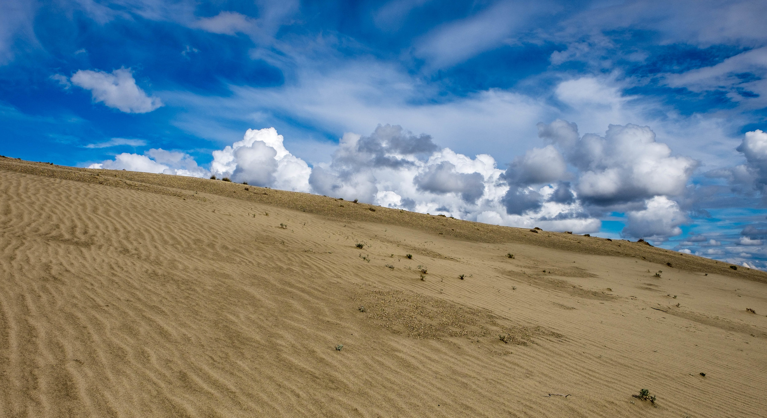 Kobuk Valley National Park - 014.jpg