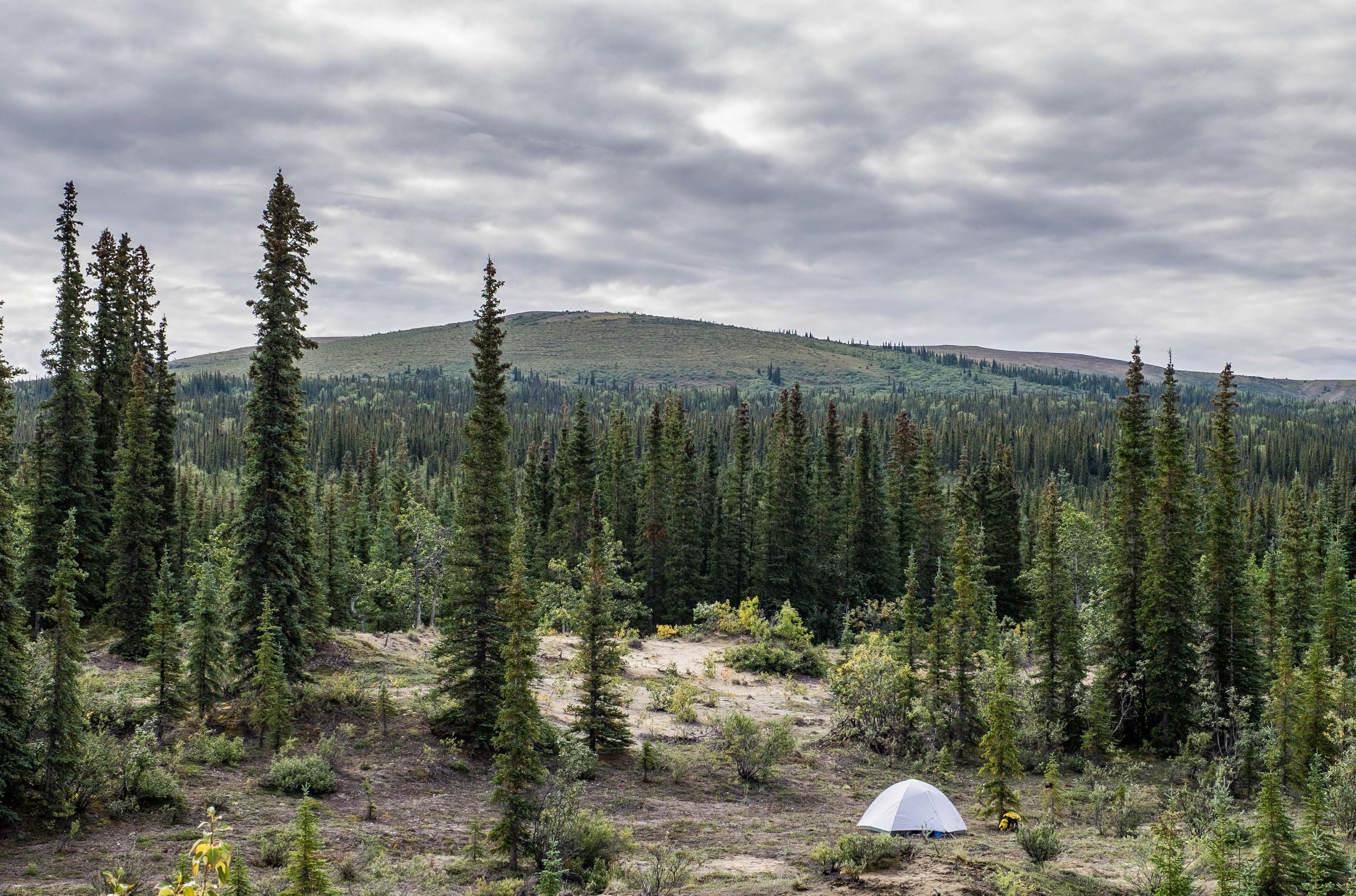 All set up to camp out in the Kobuk wilderness!