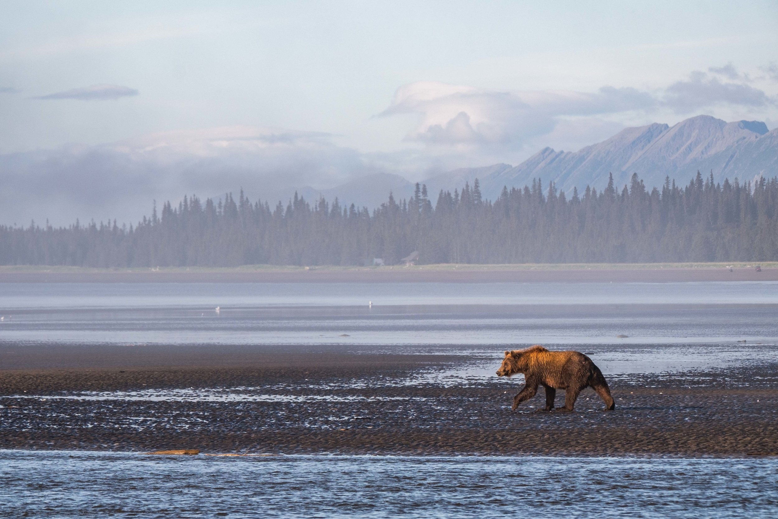Lake Clark National Park-052.jpg