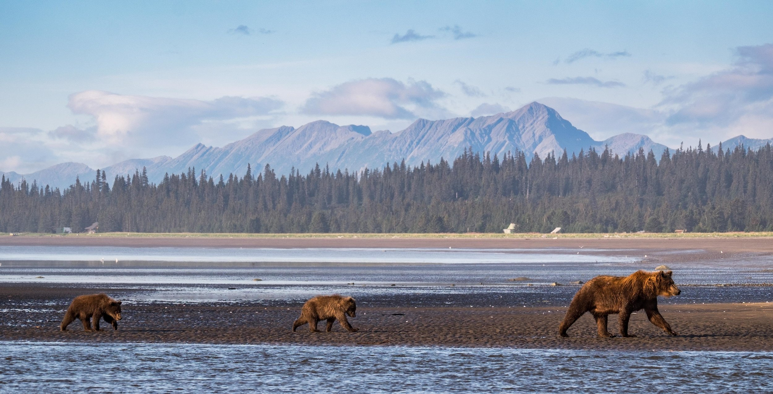 Lake Clark National Park-053.jpg