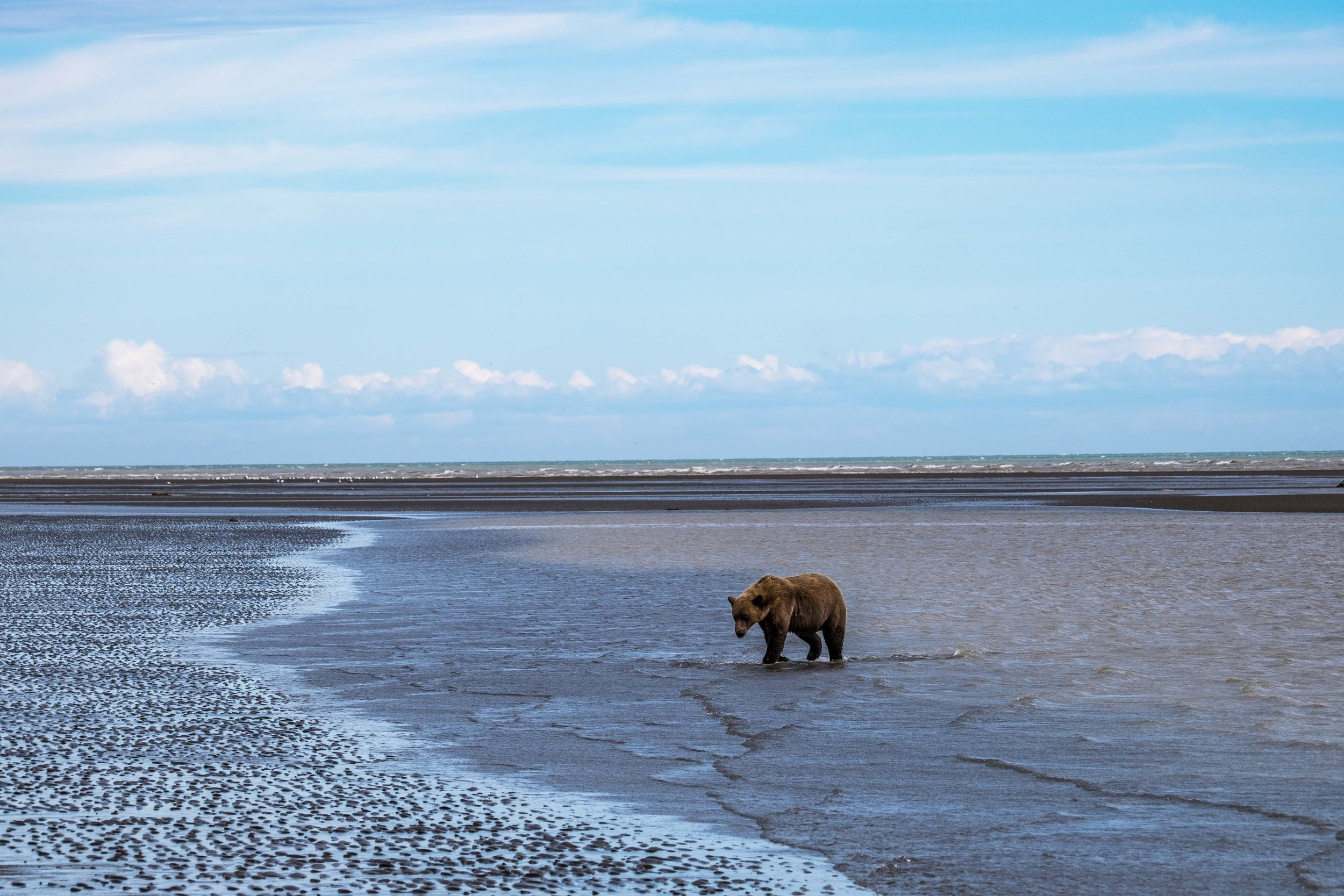 Lake Clark National Park-070.jpg