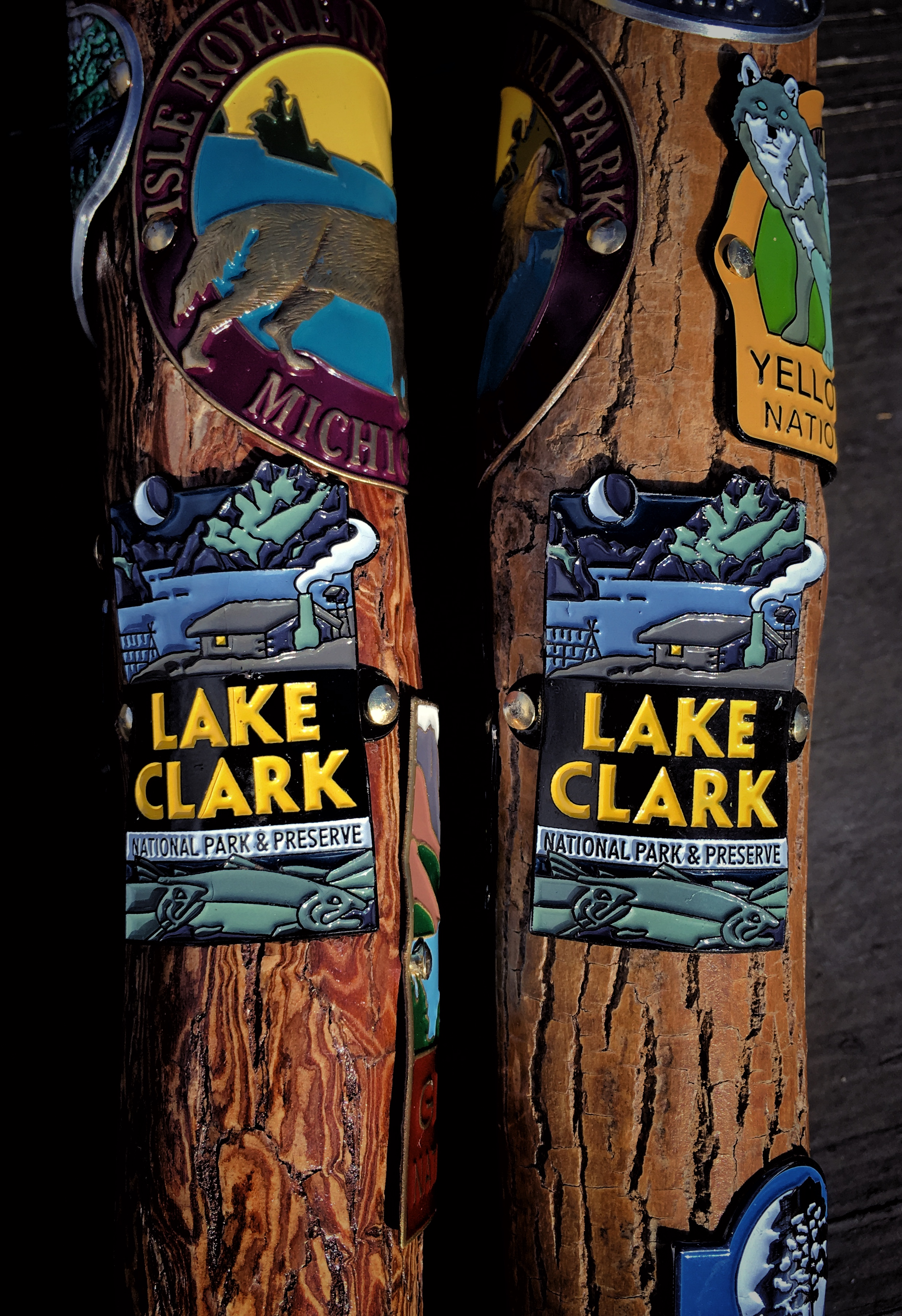 Hiking stick medallions from Lake Clark National Park & Preserve in Alaska.