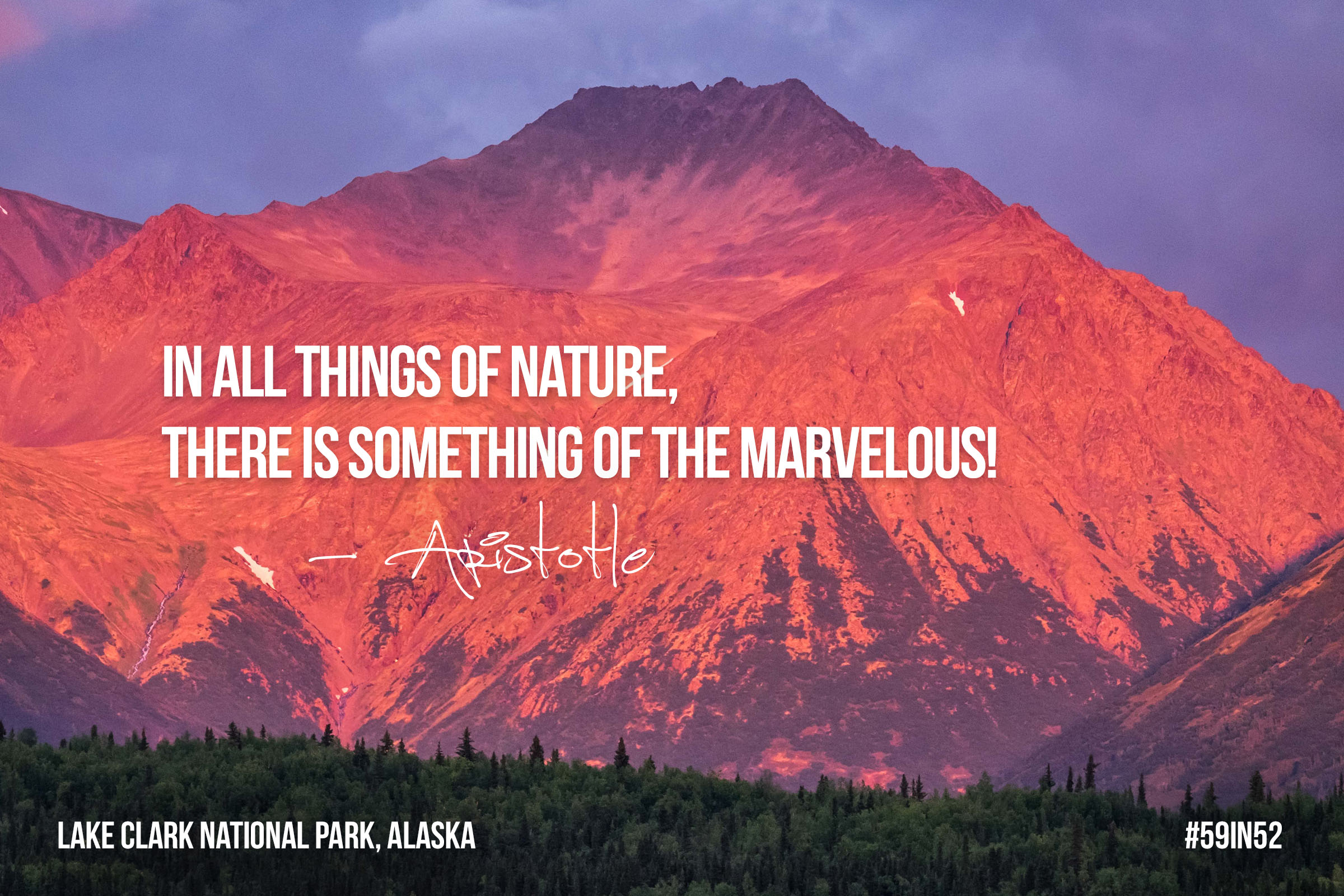 """In all things of nature, there is something of the marvelous!"" - Aristotle"