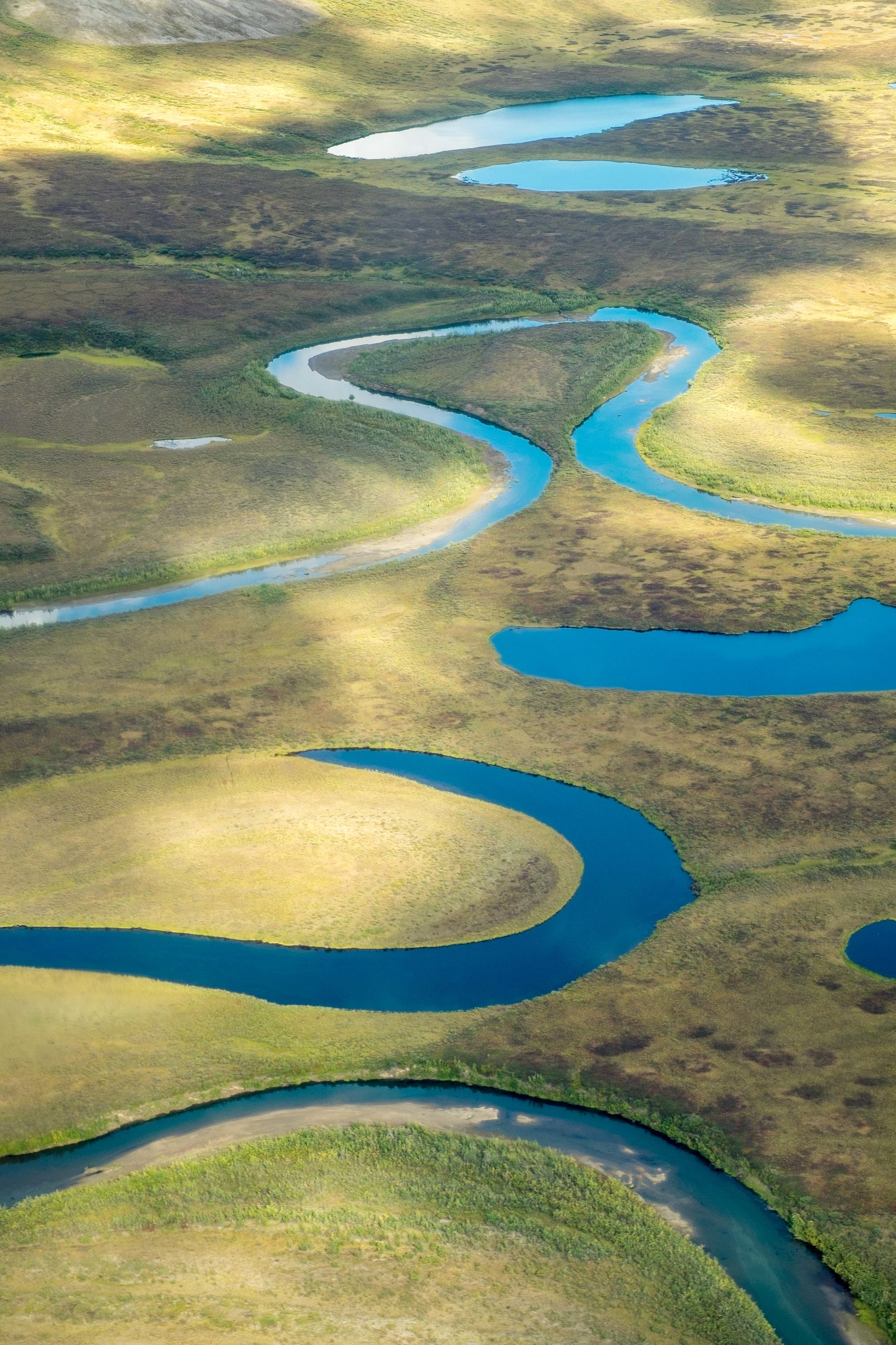 Oxbow river bends.