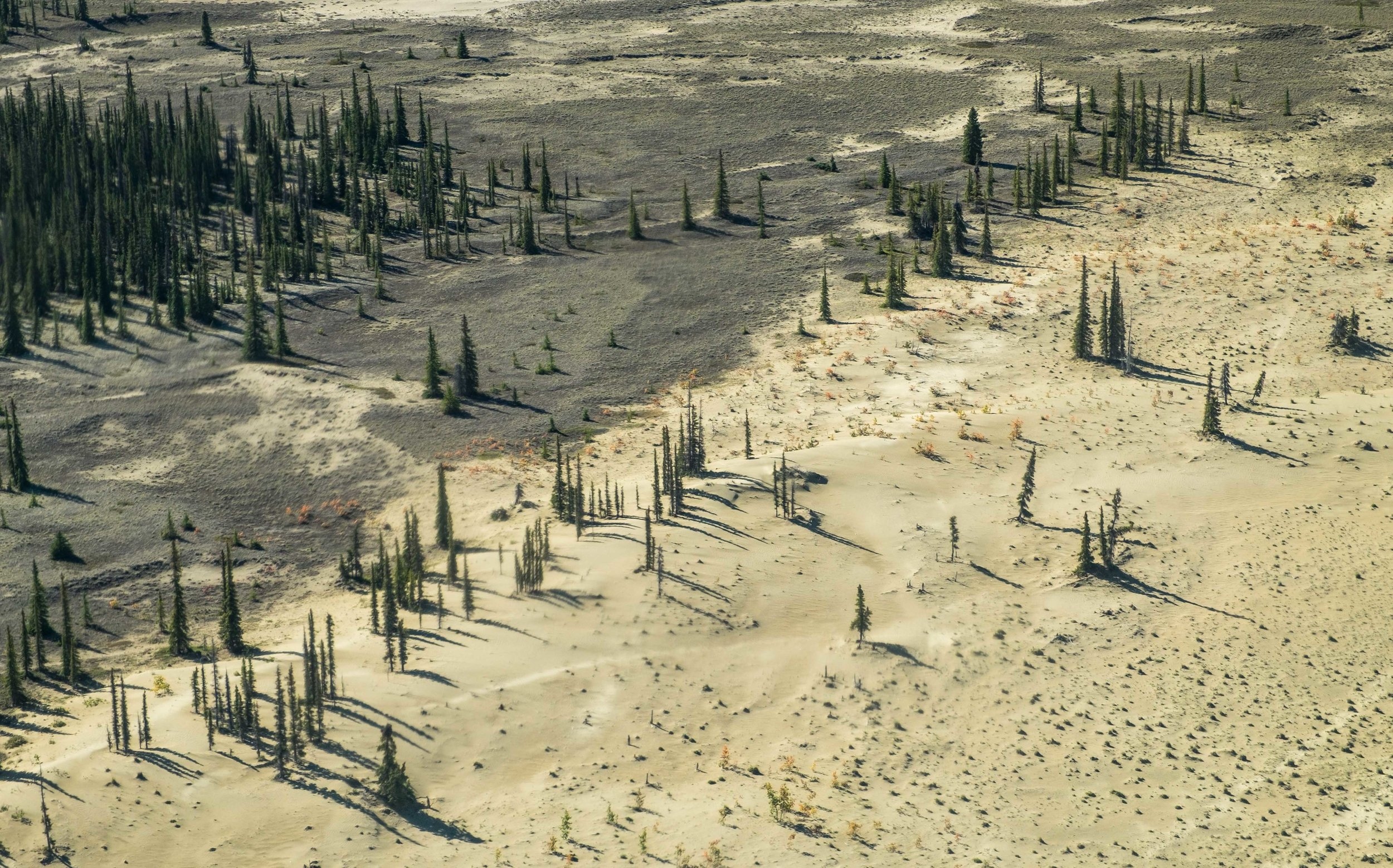 More scenes of Kobuk from the air.