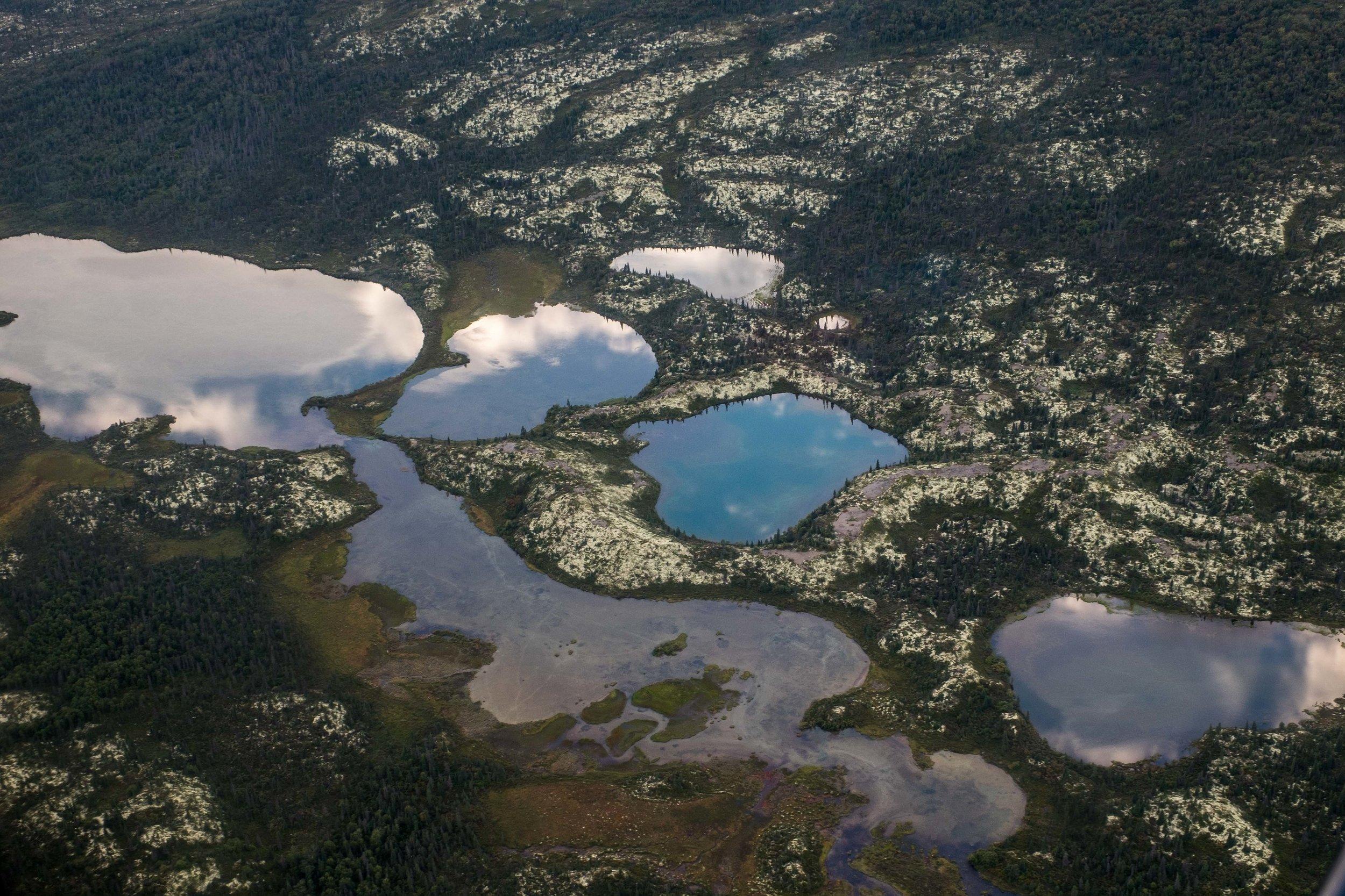 20160819-JI-Lake Clark National Park-_DSF2716.jpg