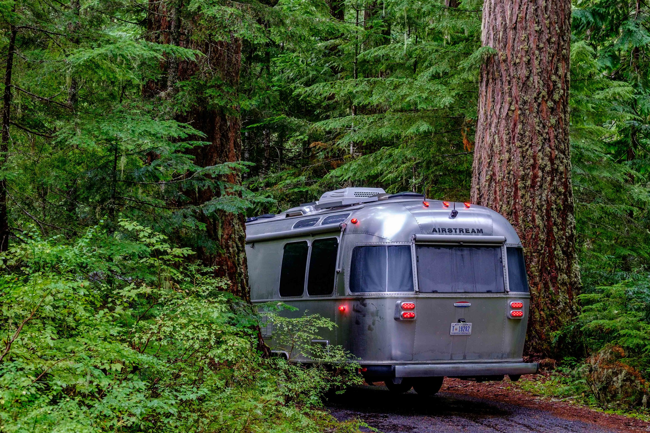 Wally the Airstream found camping bliss at the Cougar Rock Campground in the Paradise section of Rainier.