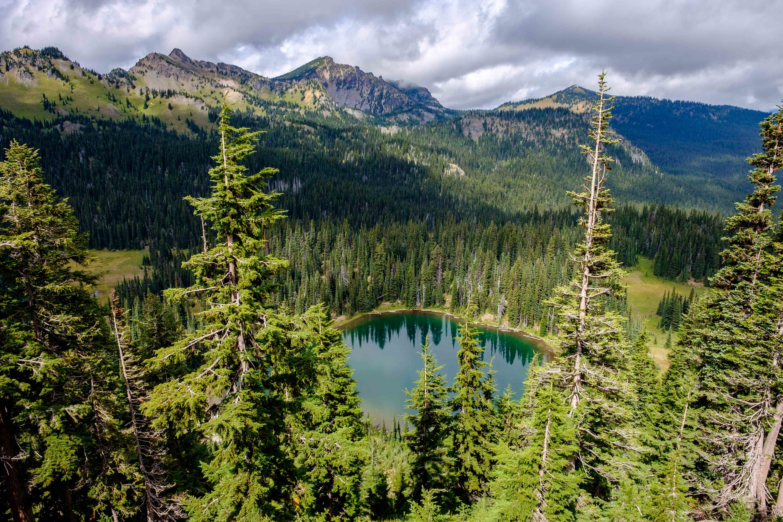 Finding hiking bliss in the subalpine section of Sunrise, the highest elevation area in the park reachable by car.