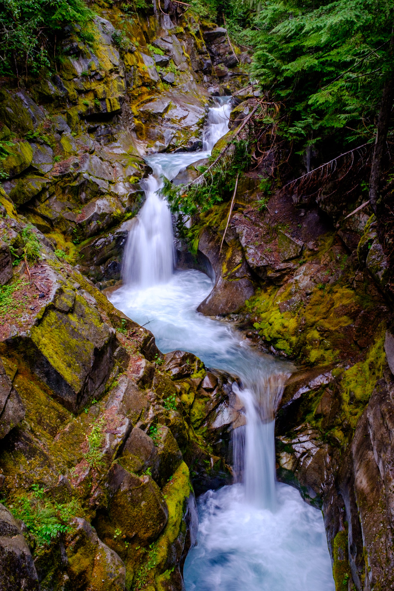 Mount Rainier National Park - 018.jpg