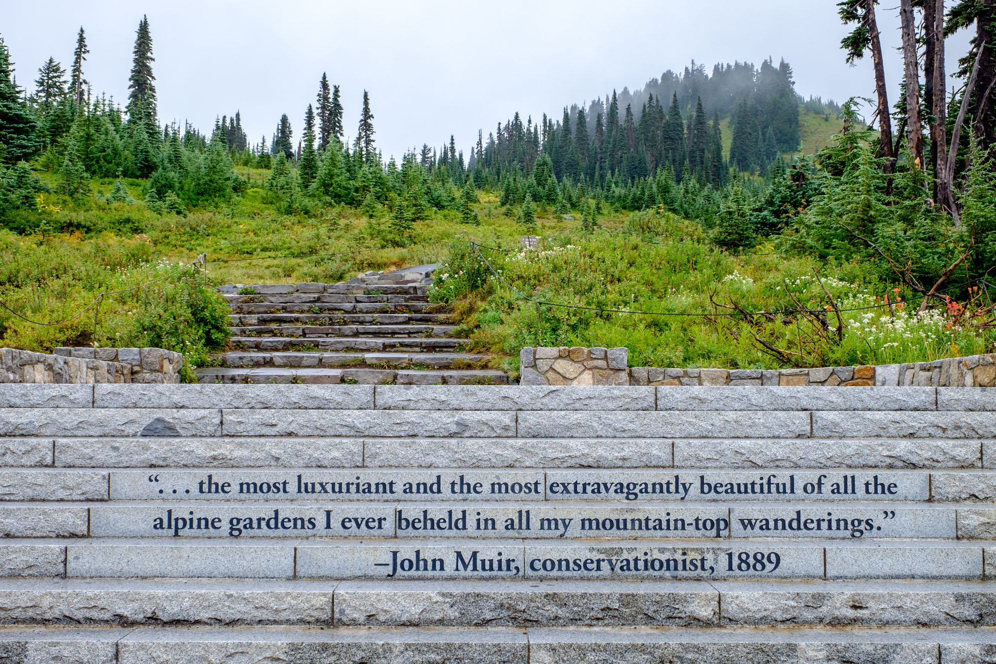 Paradise is the most popular area in the park, and for good reason: it is absolutely gorgeous. Here, these words by John Muir illustrate some of that feeling.
