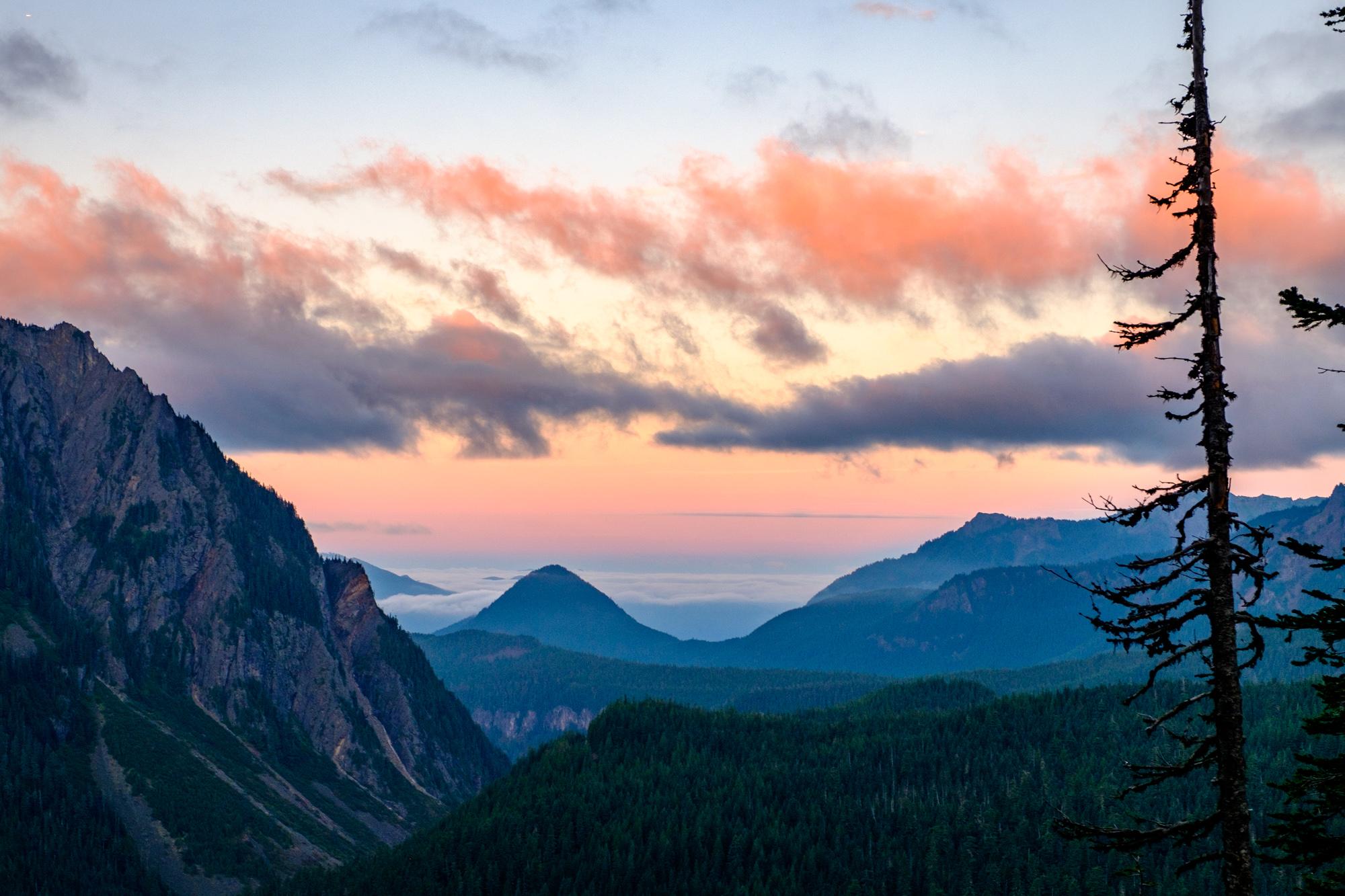 Mount Rainier National Park - 035.jpg