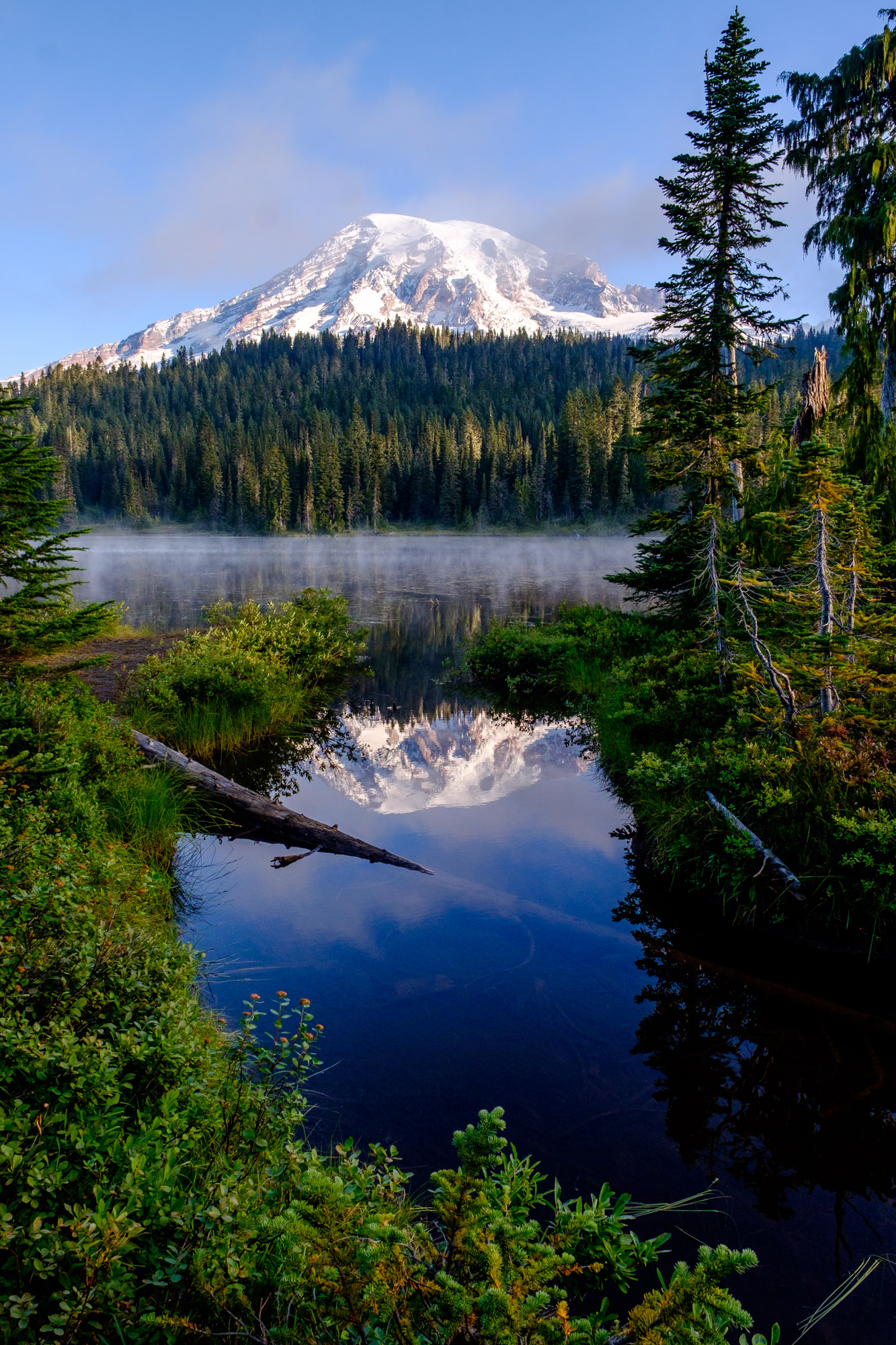 Mount Rainier reflected in a small pond near Reflection lakes.