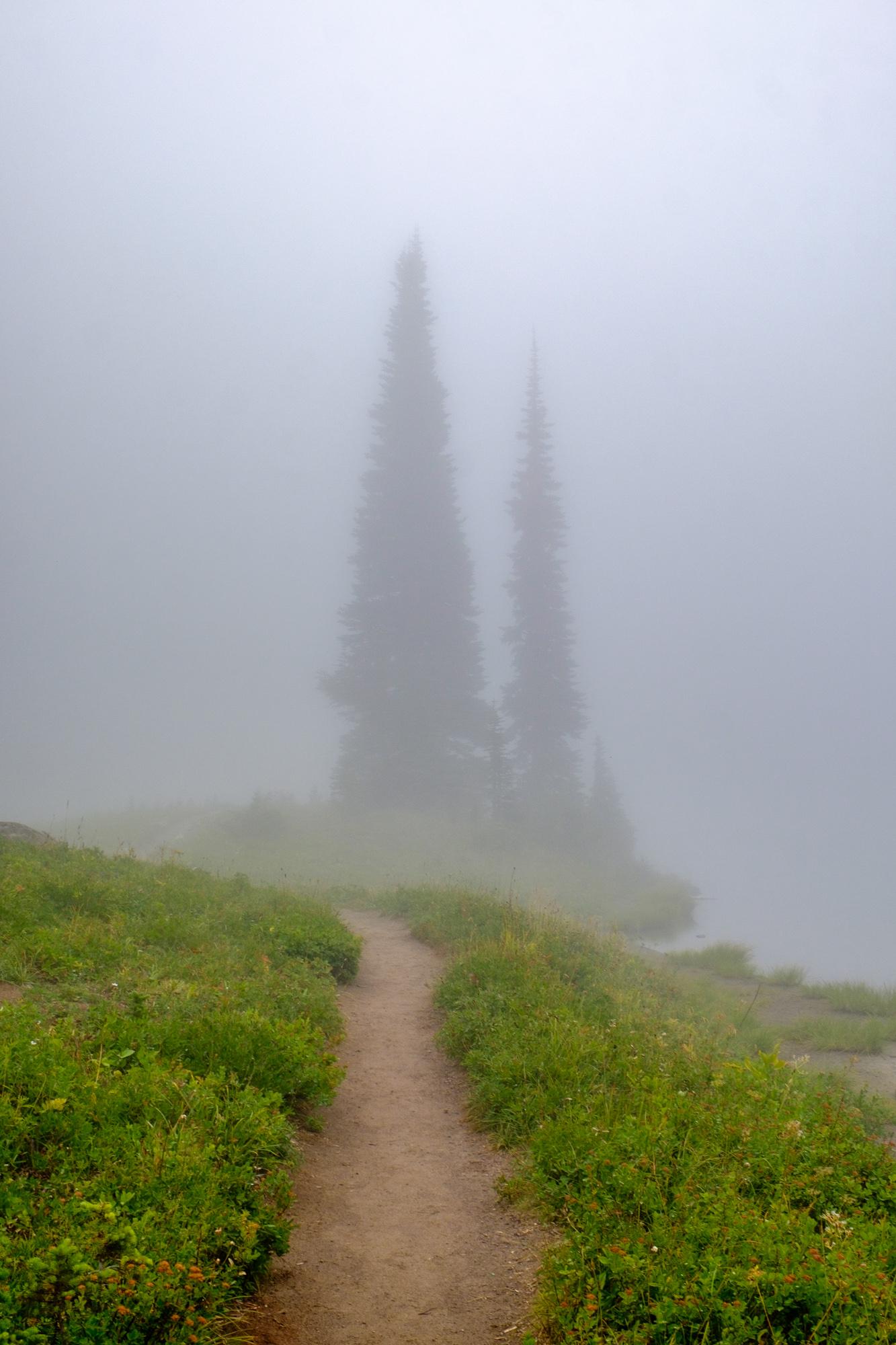 Mount Rainier National Park - 042.jpg