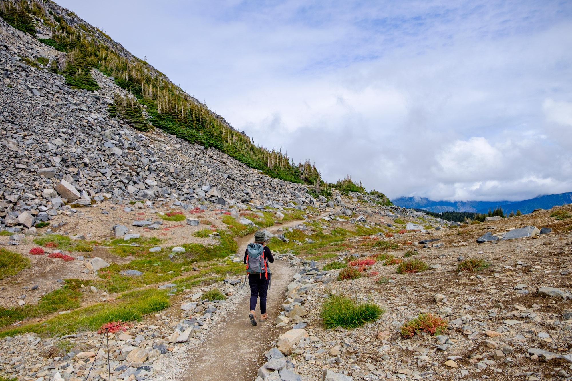 Mount Rainier National Park - 047.jpg