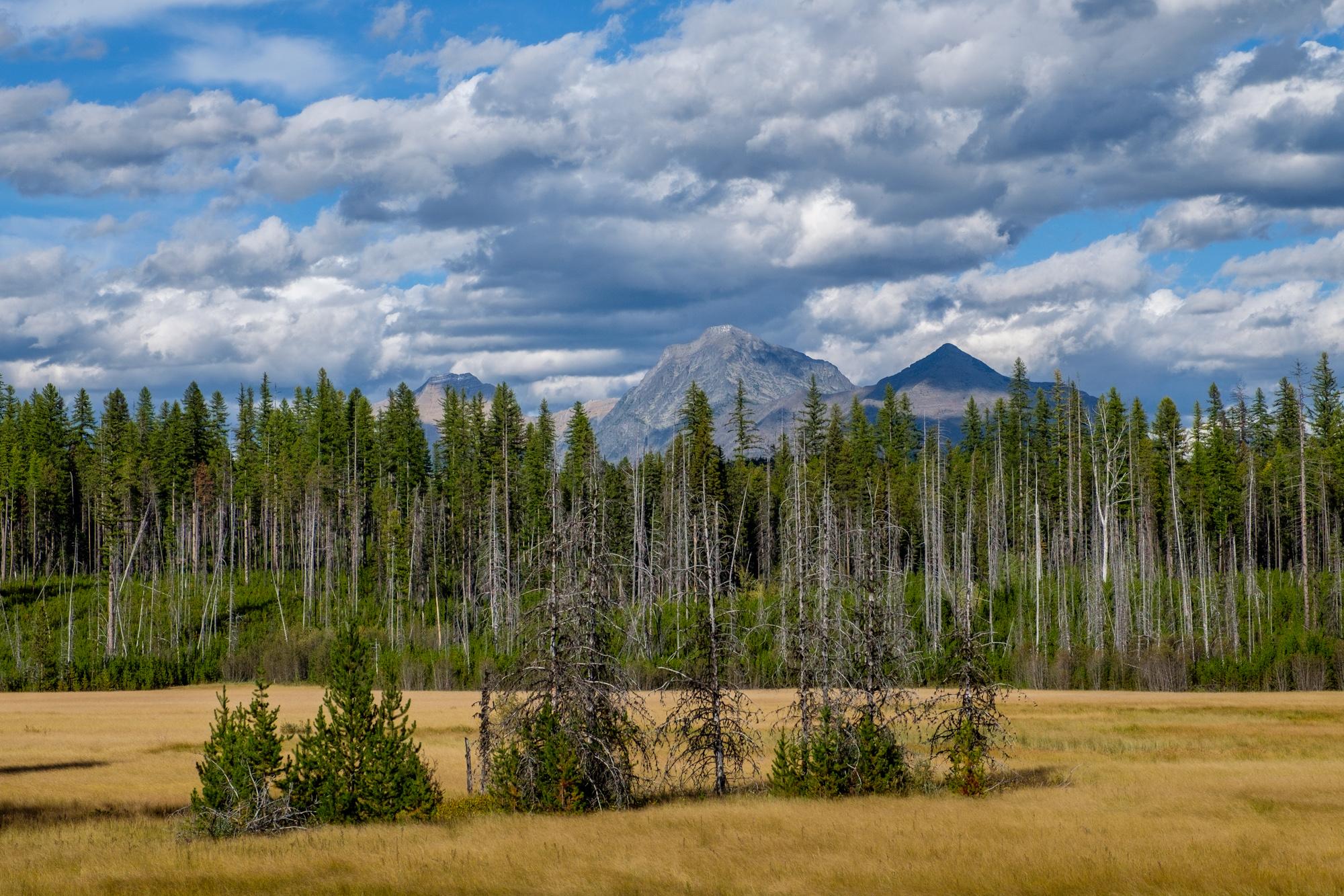 Glacier National Park - 013.jpg