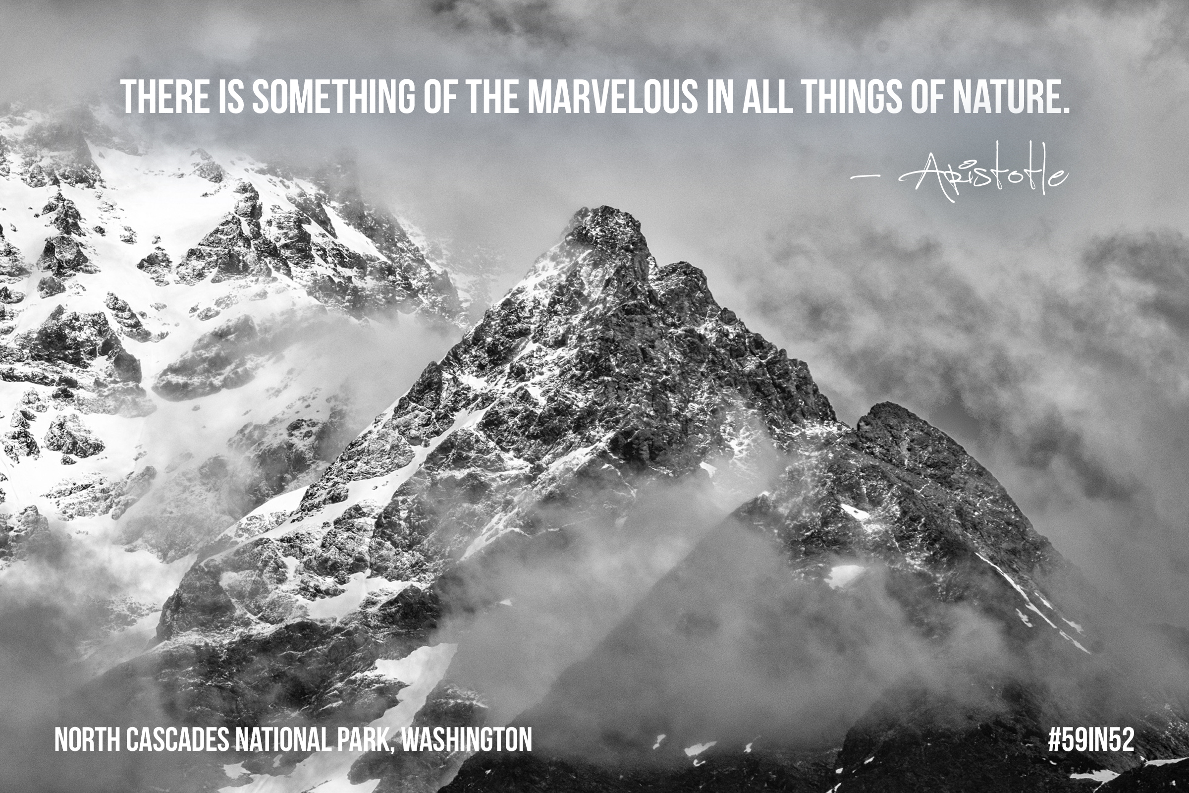 """There is something marvelous in all things of nature."" - Aristotle"