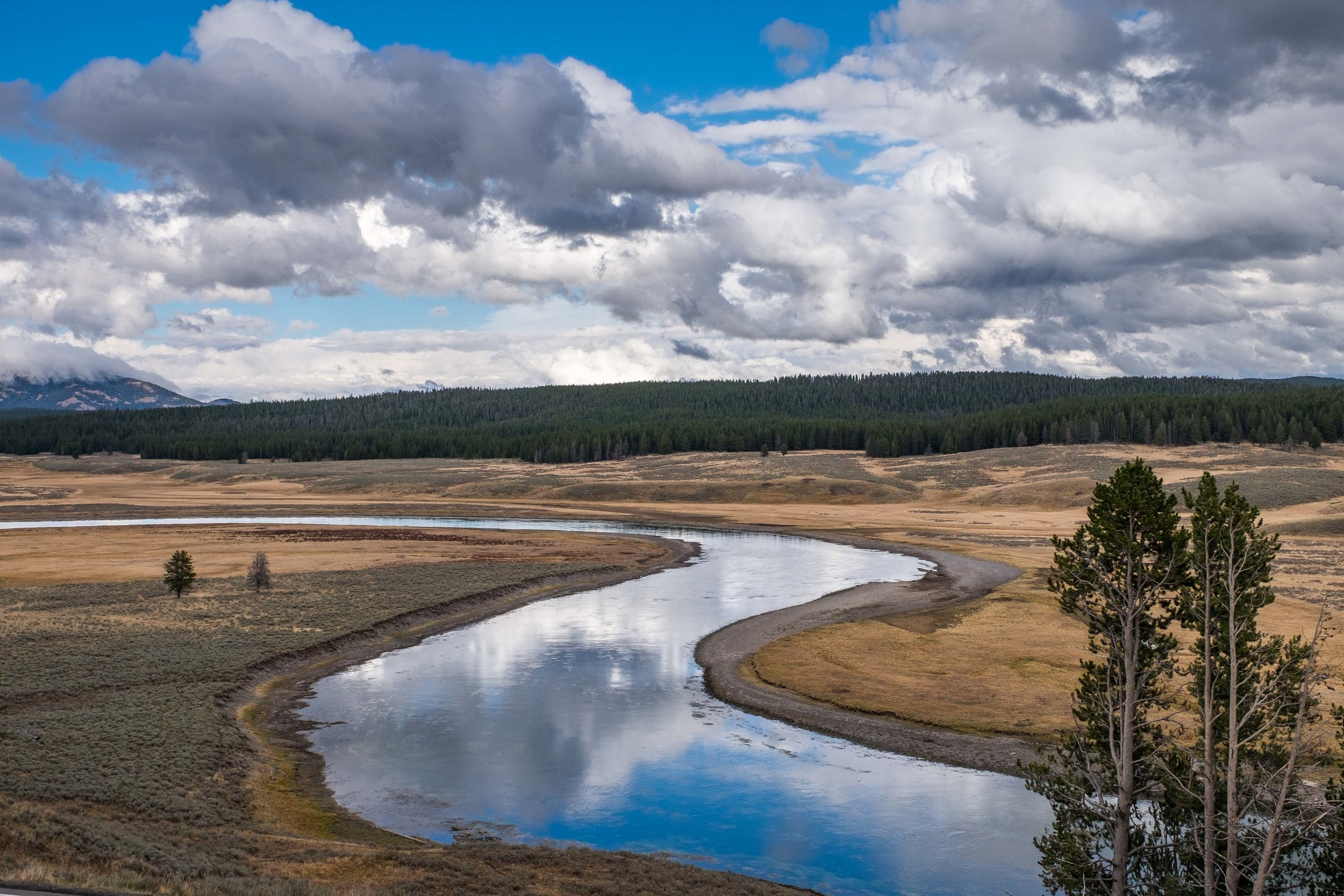 A beautiful S-curve in the Yellowstone River in Hayden Valley.