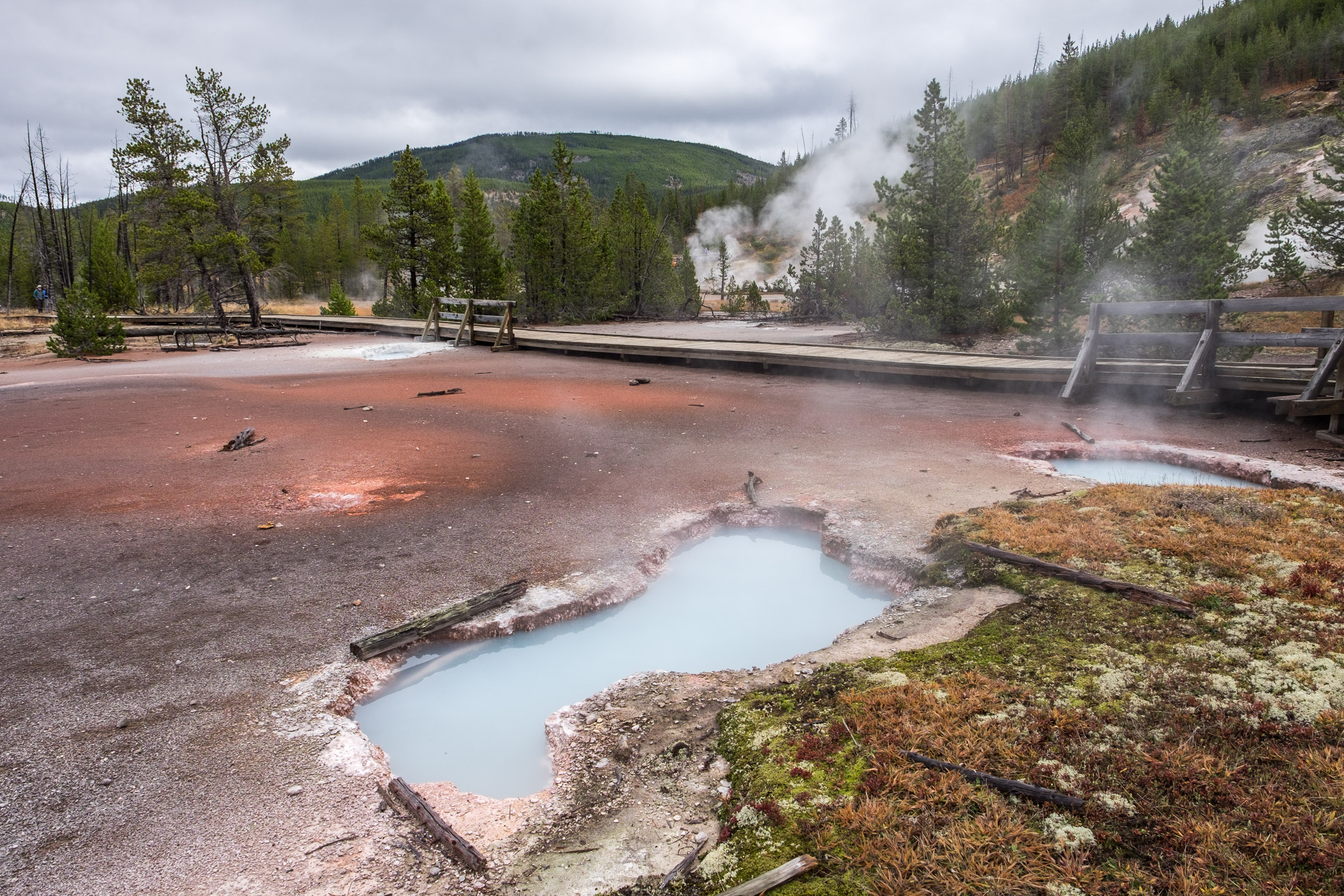 A hot spring at the Norris Geyser Basin at Yellowstone National Park.