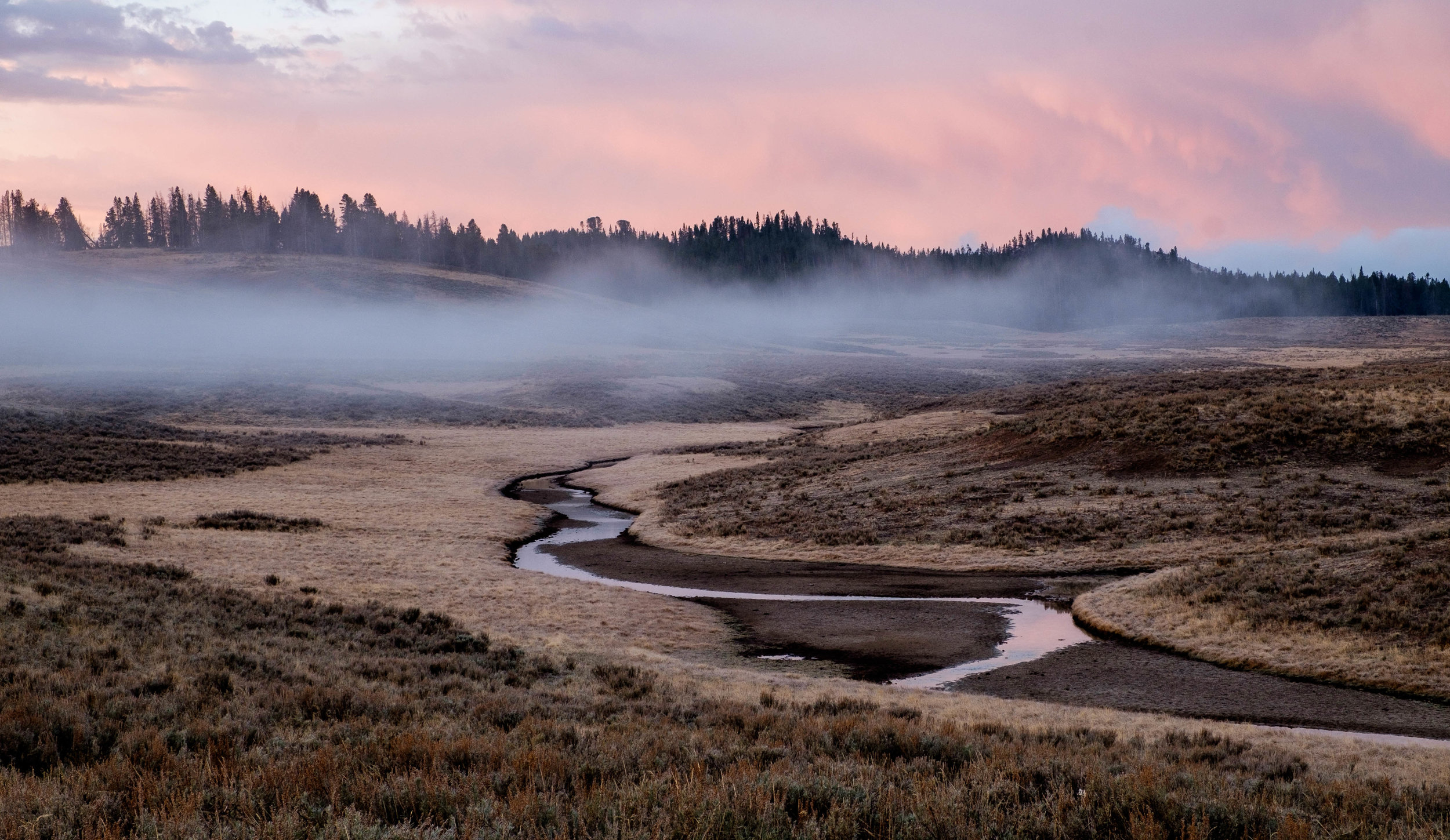 Water runs throughout Yellowstone providing vital hydration to wildlife ecosystems.