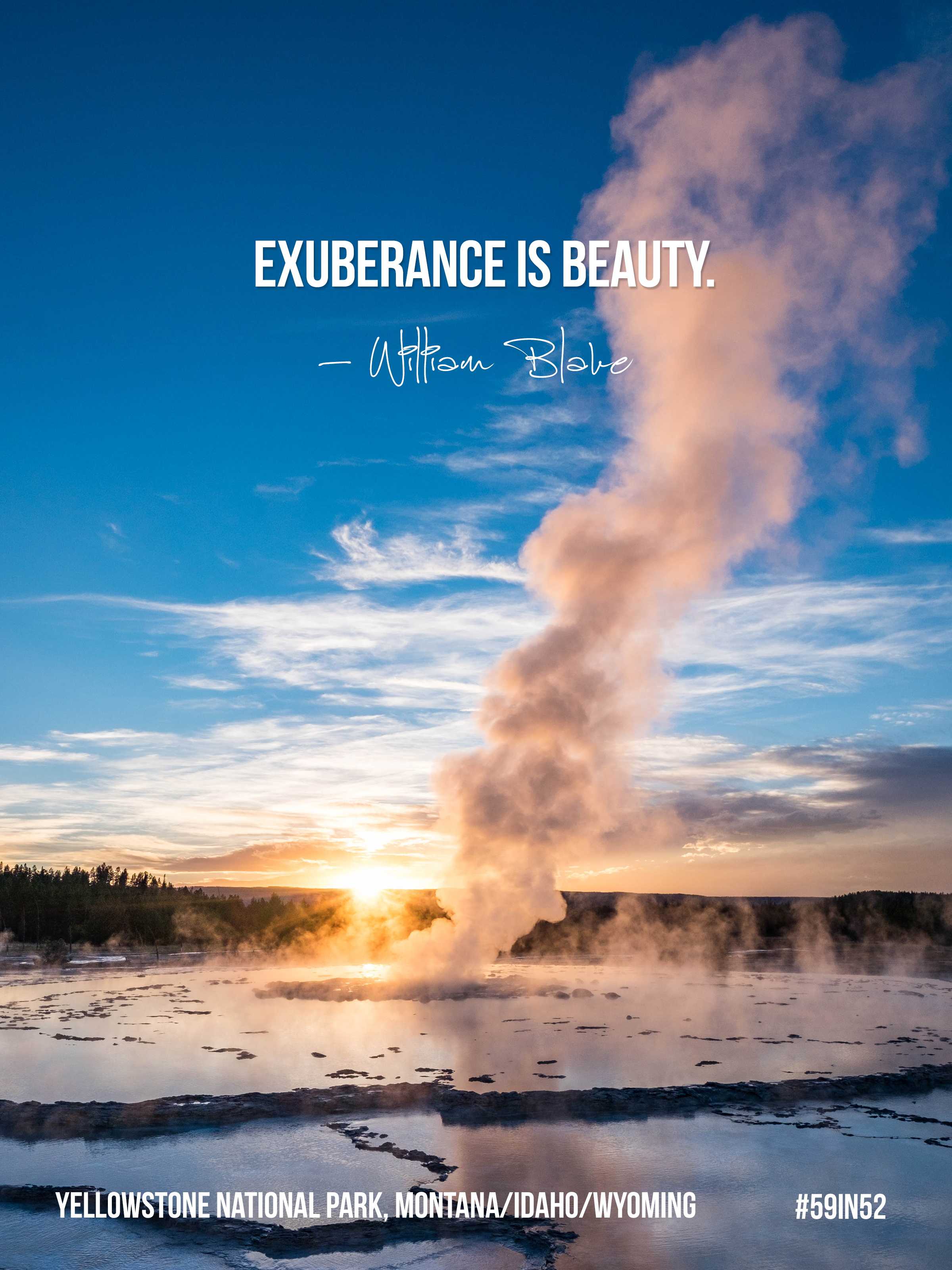 'Exuberance is beauty.' - William Blake