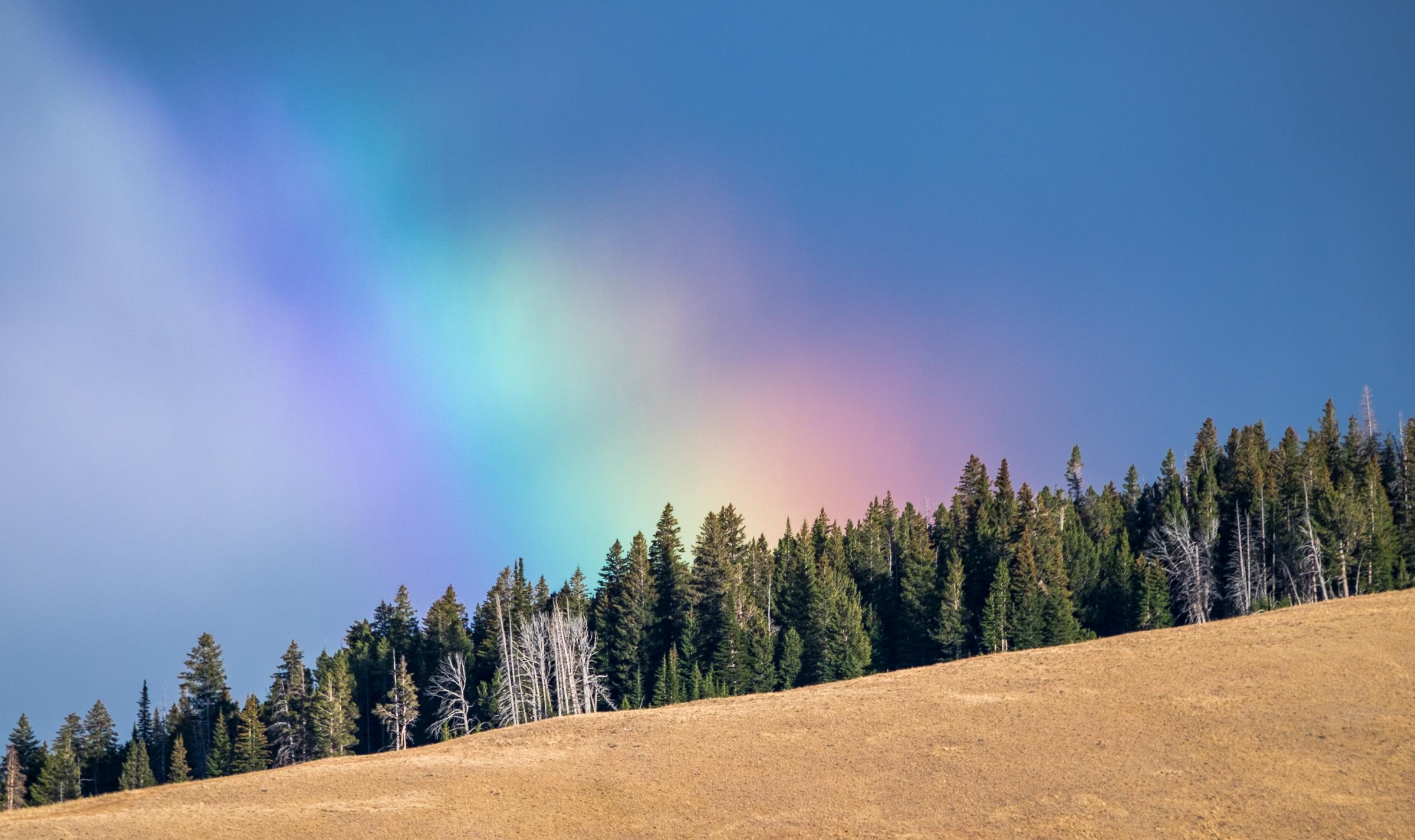 20160919-JI-Yellowstone National Park-_DSF6915-2.jpg