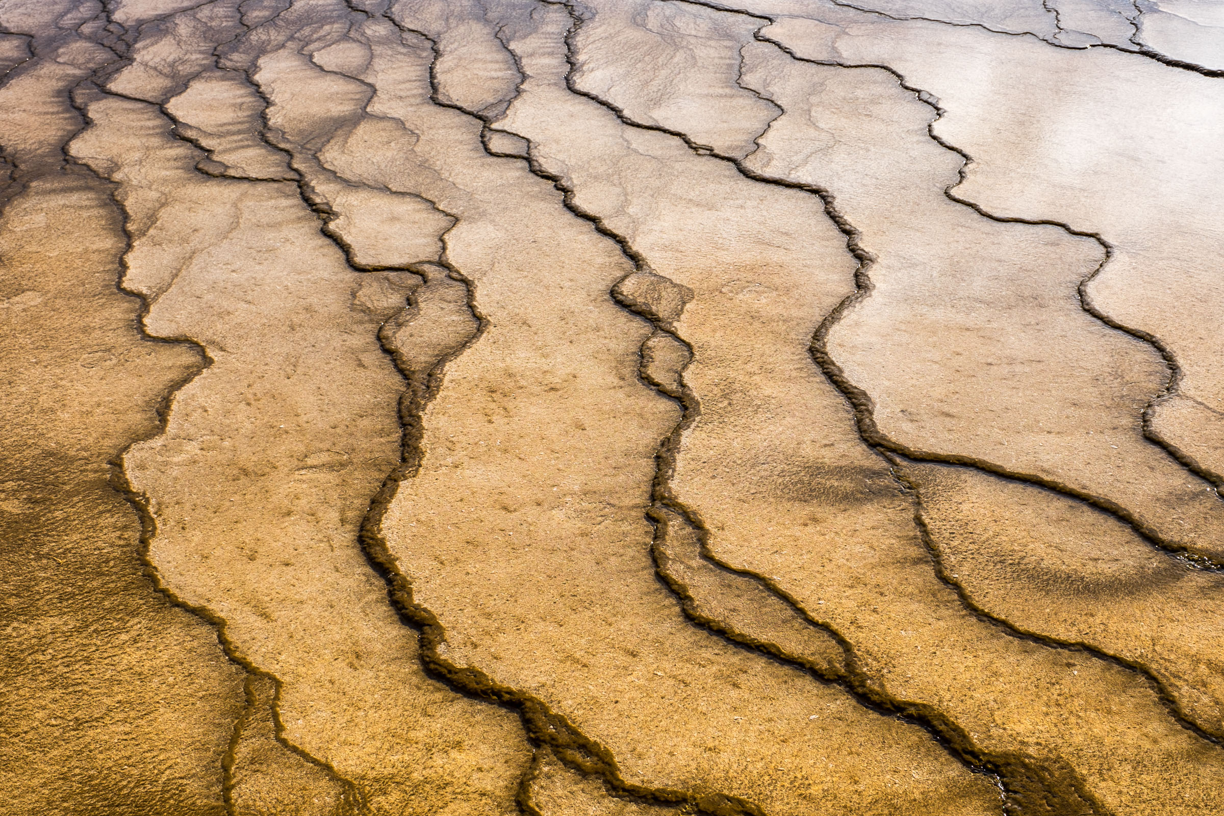 20160920-JI-Yellowstone National Park-_DSF0478.jpg