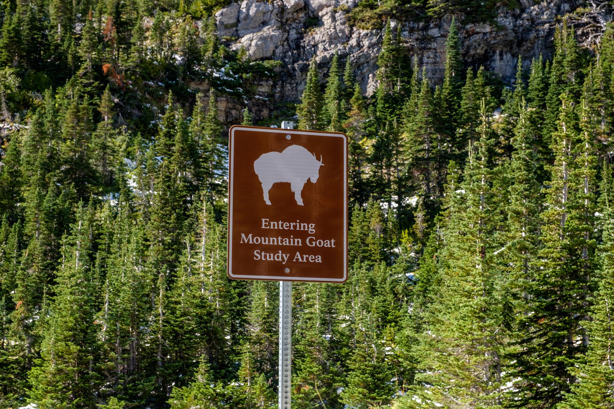 20160913-SP-Glacier National Park-_DSF2528.jpg