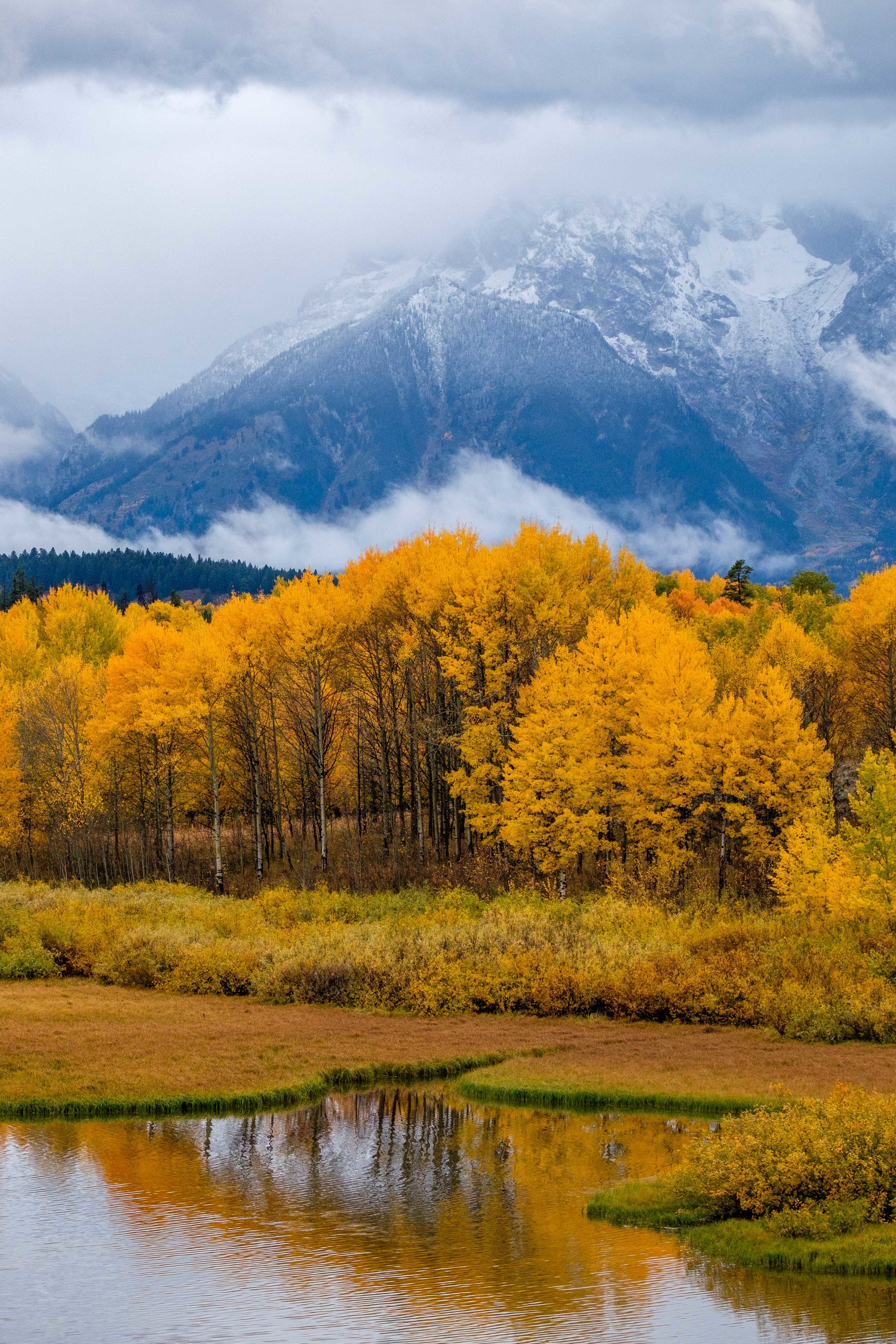 It seems we could see beautiful fall color scenes in every direction.