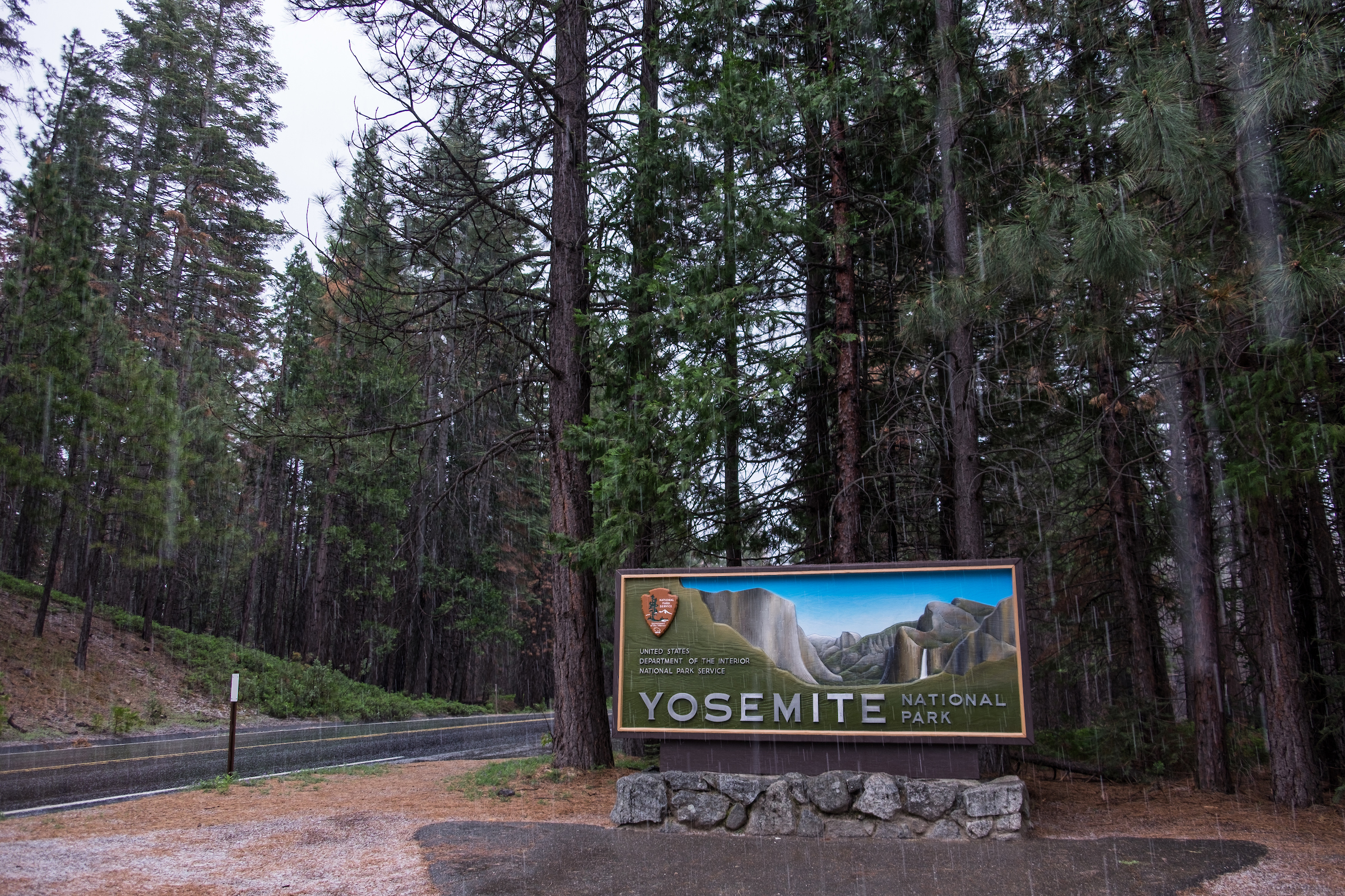 20160521-SP-Yosemite National Park-_DSF5001 (1).jpg