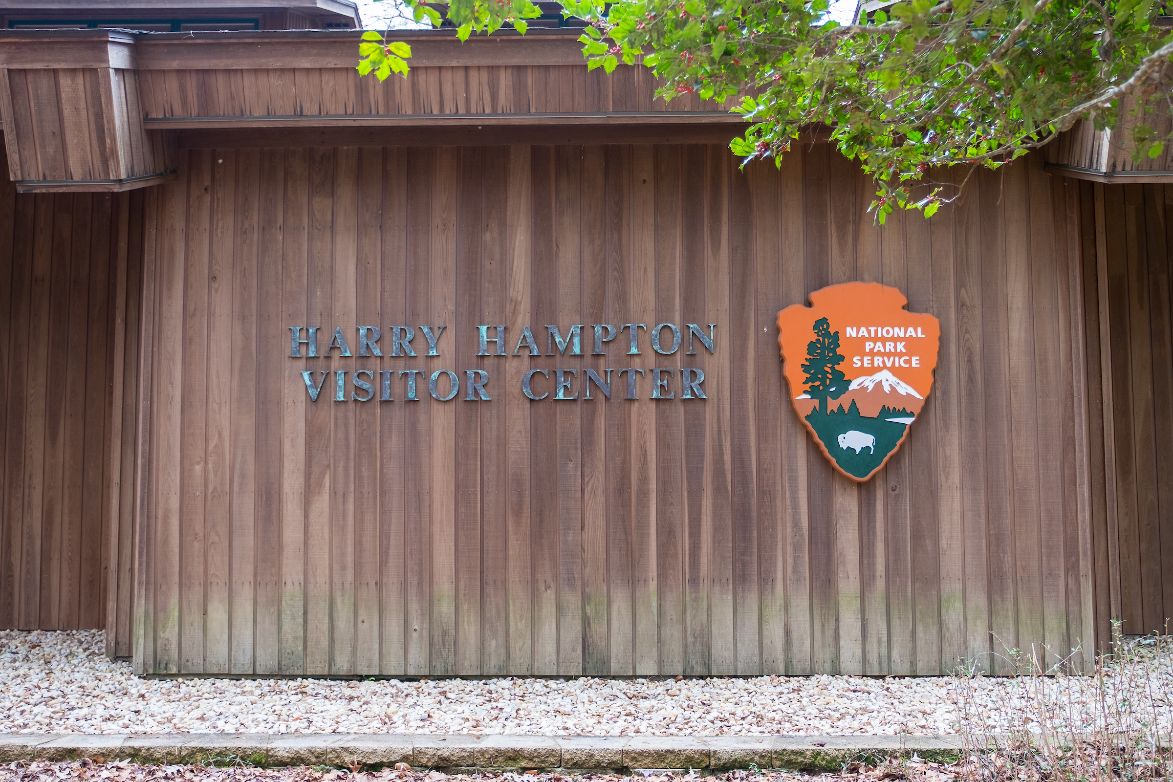 20160208-JI-Congaree National Park-261-_DSF8555.jpg