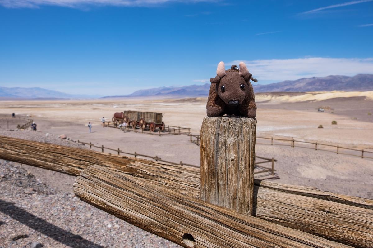 20160312-SP-Death Valley National Park-1440-_DSF5758.jpg