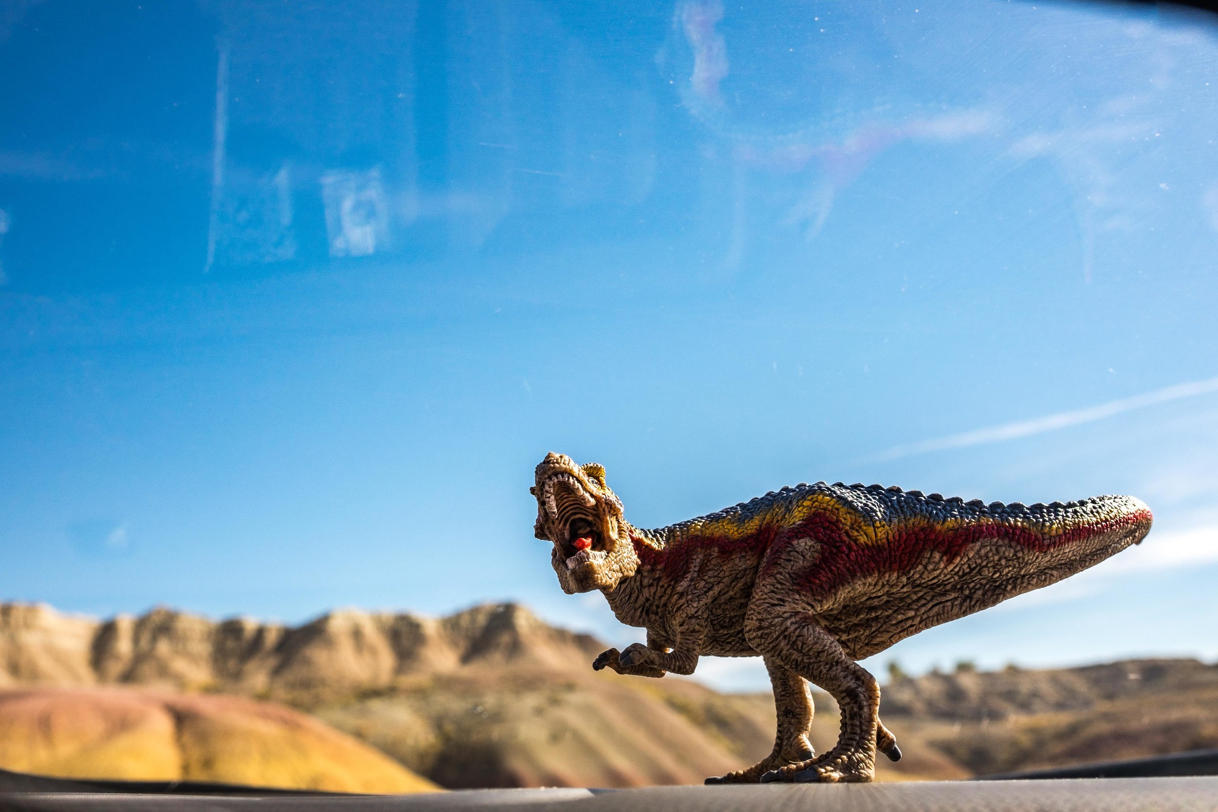 On the road with our dashboard dino in the Badlands in South Dakota!