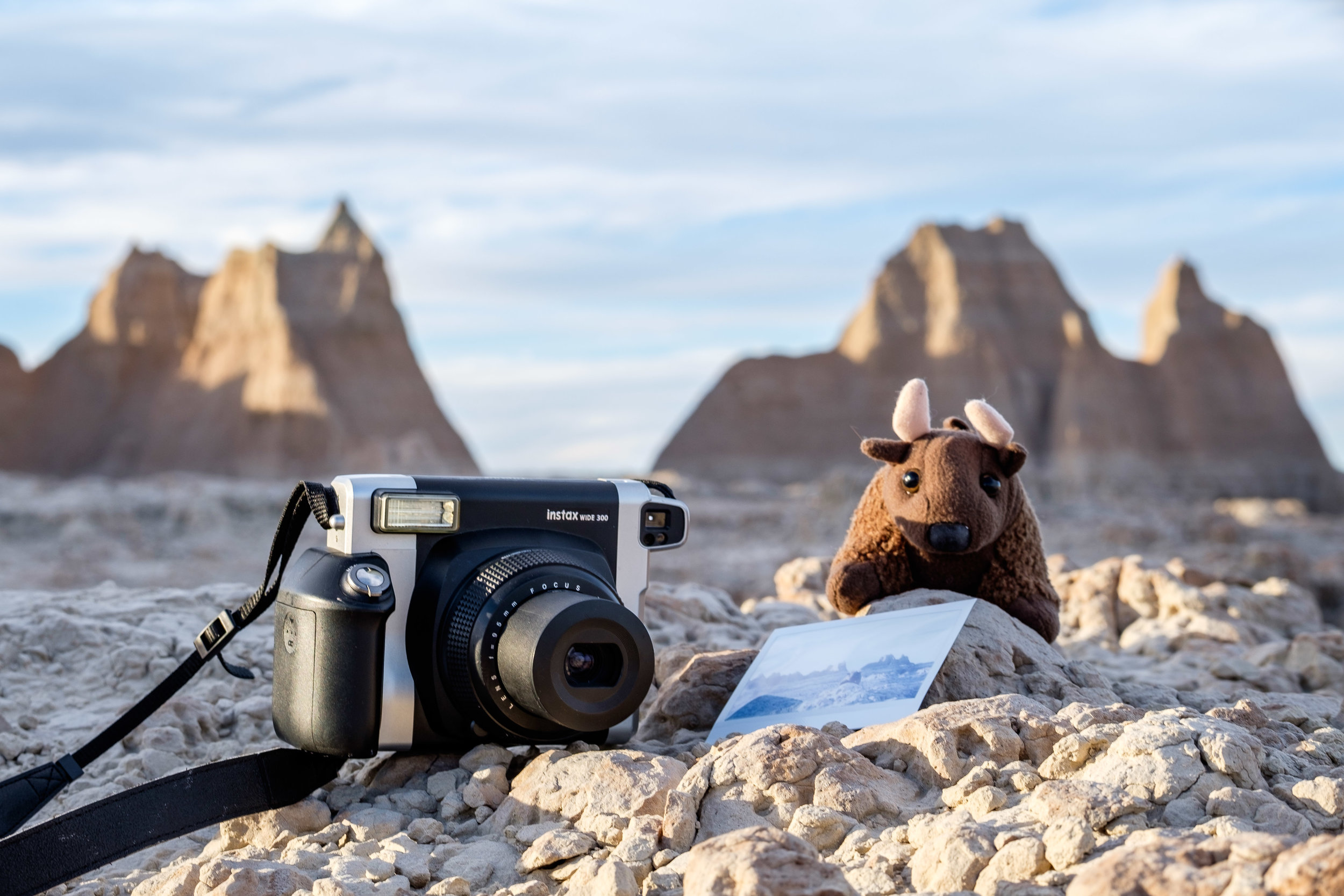 Buddy Bison and Instax in Badlands National Park in South Dakota.