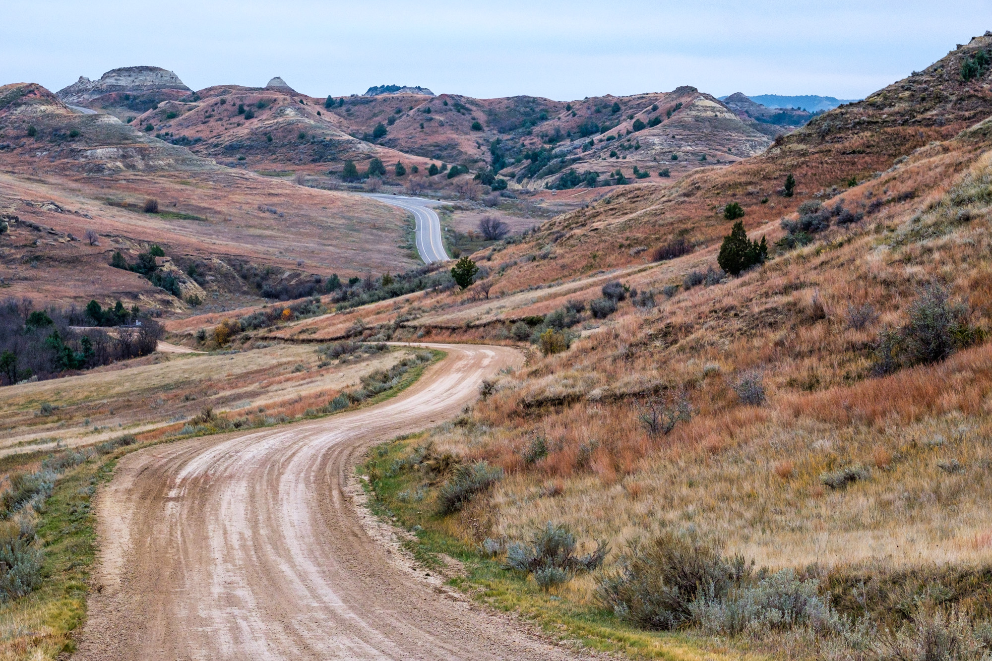 This is what most of the roads look like within the park...rolling grass and badlands.