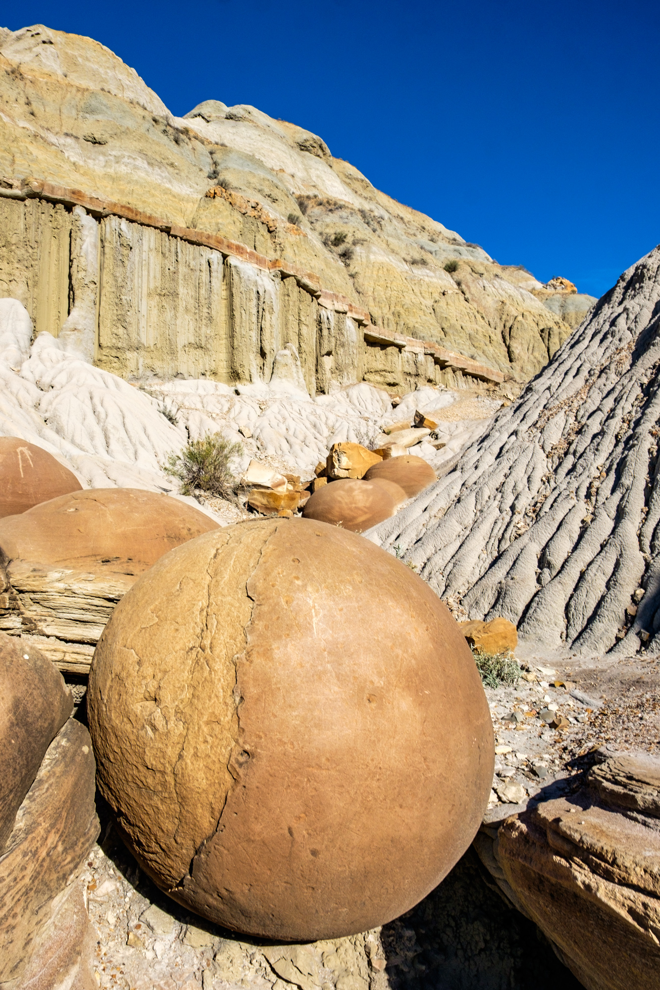 Cannonball concretions....a very unique geological formation in the park.