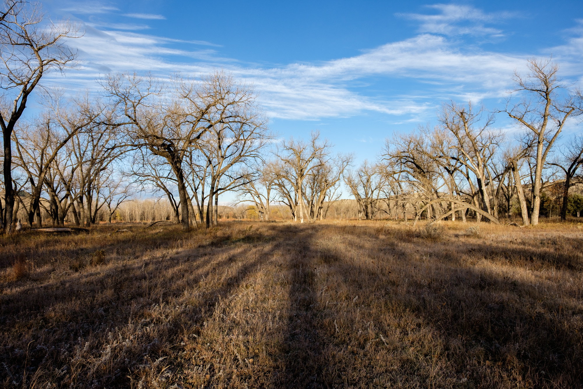 Theodore Roosevelt National Park - 070.jpg