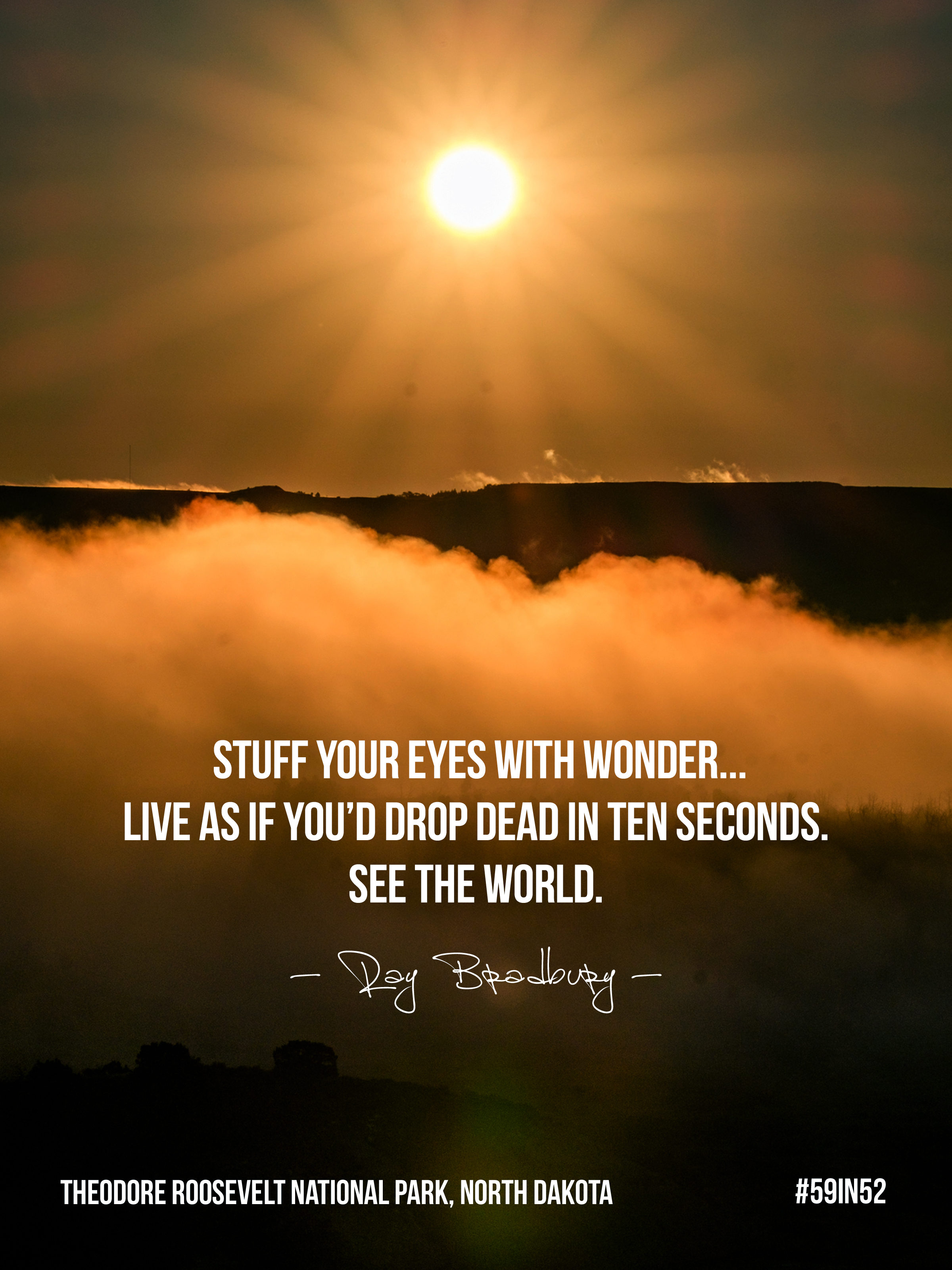 """""""Stuff your eyes with wonder... live as if you'd drop dead in ten seconds. See the world."""" - Ray Bradbury"""