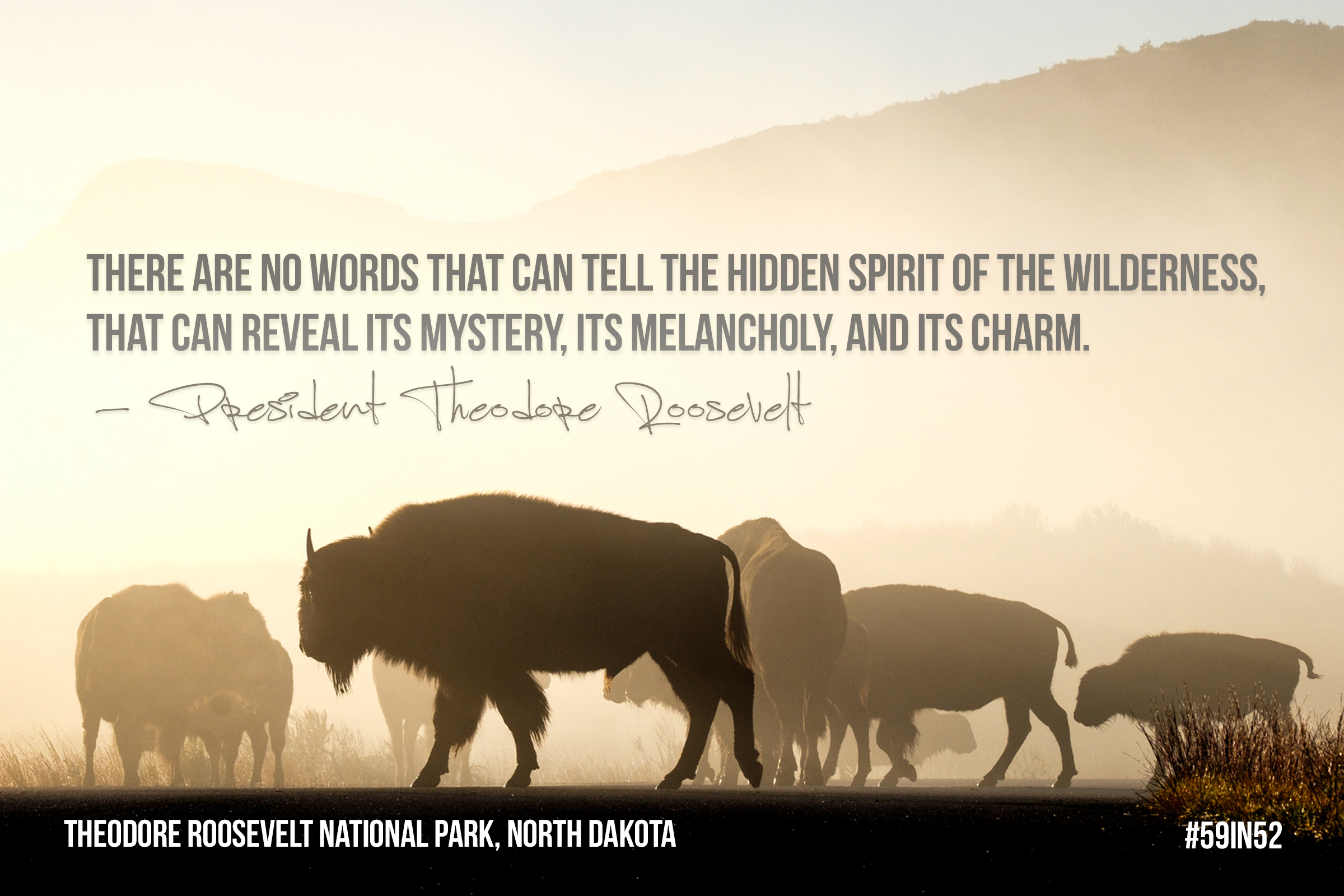 """""""There are no words that can tell the hidden spirit of the wilderness, that can reveal its mystery, its melancholy, its charm."""" - President Theodore Roosevelt"""