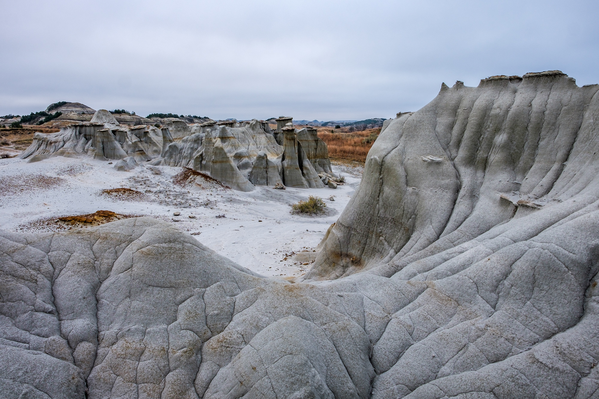 65-million year old badlands in the south unit.