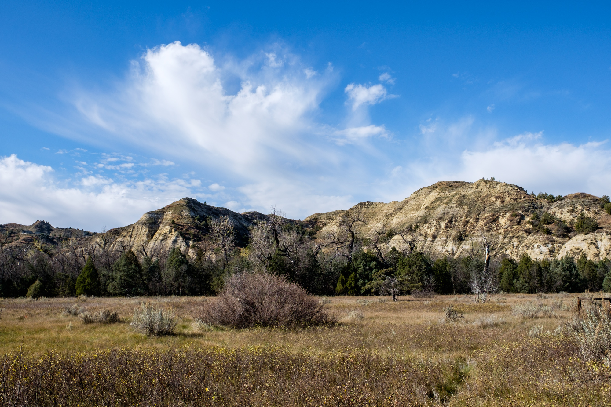 Teddy Roosevelt's backyard at Elkhorn Ranch.
