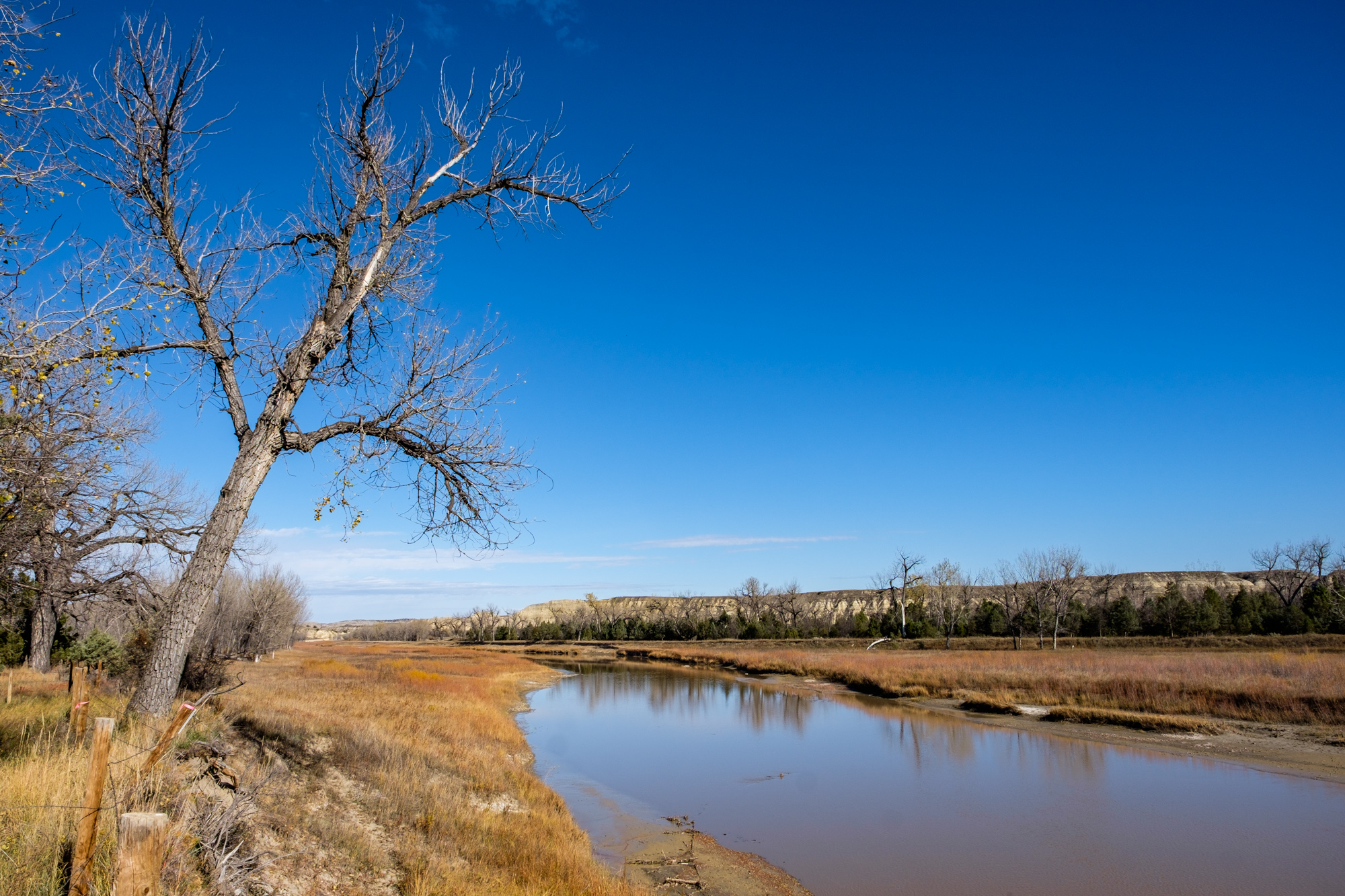 The banks of the Little Missouri River next to the site where Elkhorn Ranch once stood.