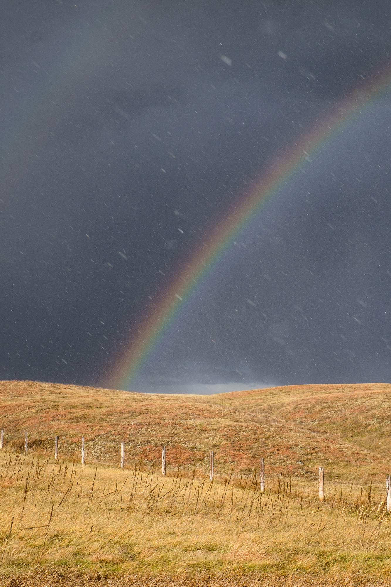 Sunshine and rain revealed a beautiful rainbow one later afternoon.