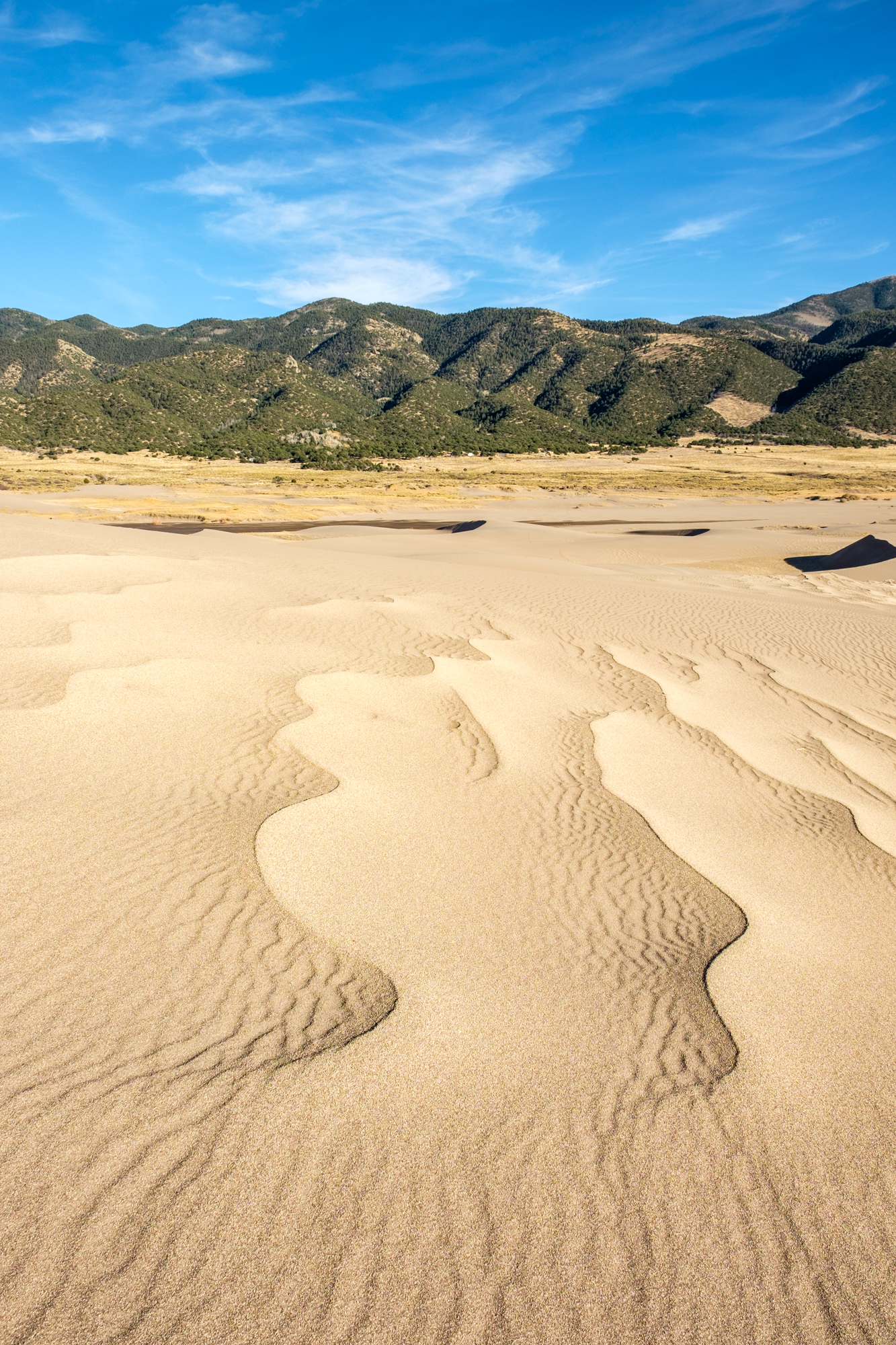 Great Sand Dunes National Park - 012.jpg