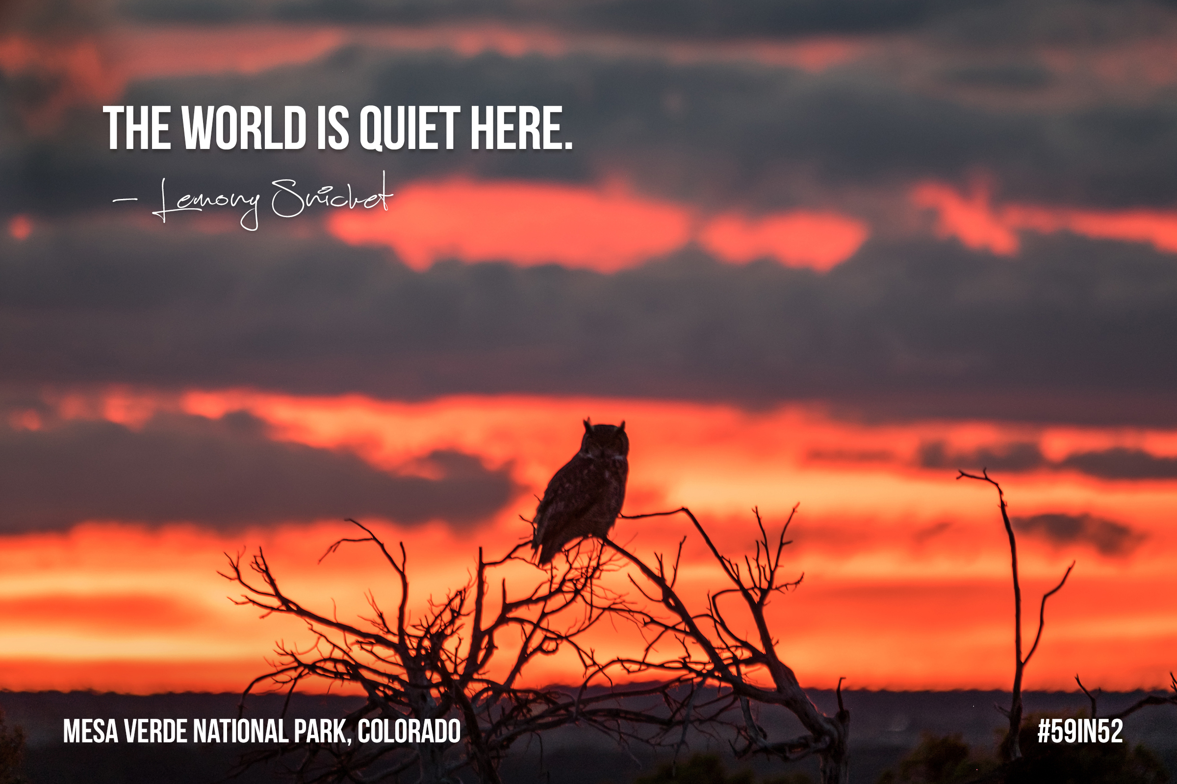 """""""The world is quiet here."""" - Lemony Snicket"""