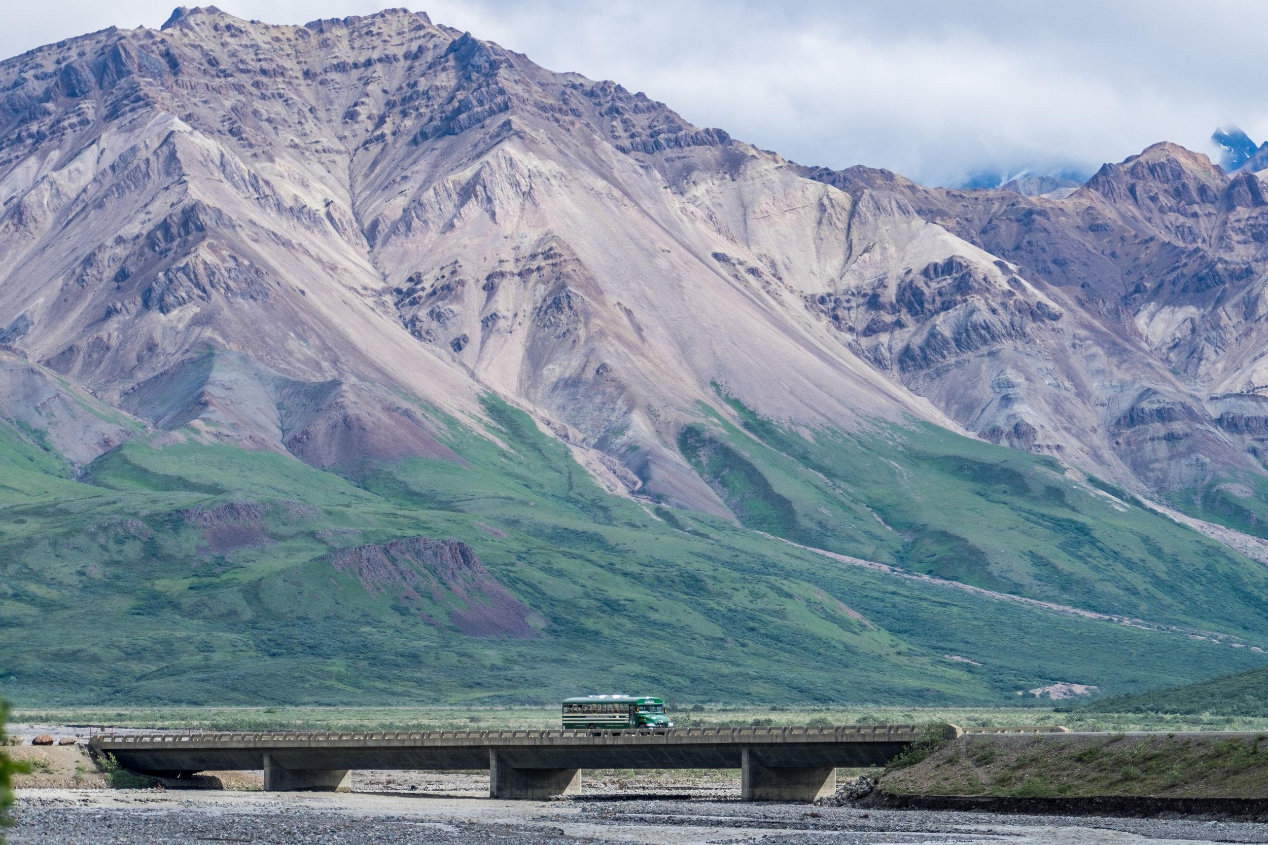 20160705-JI-Denali National Park-_DSF4568.jpg