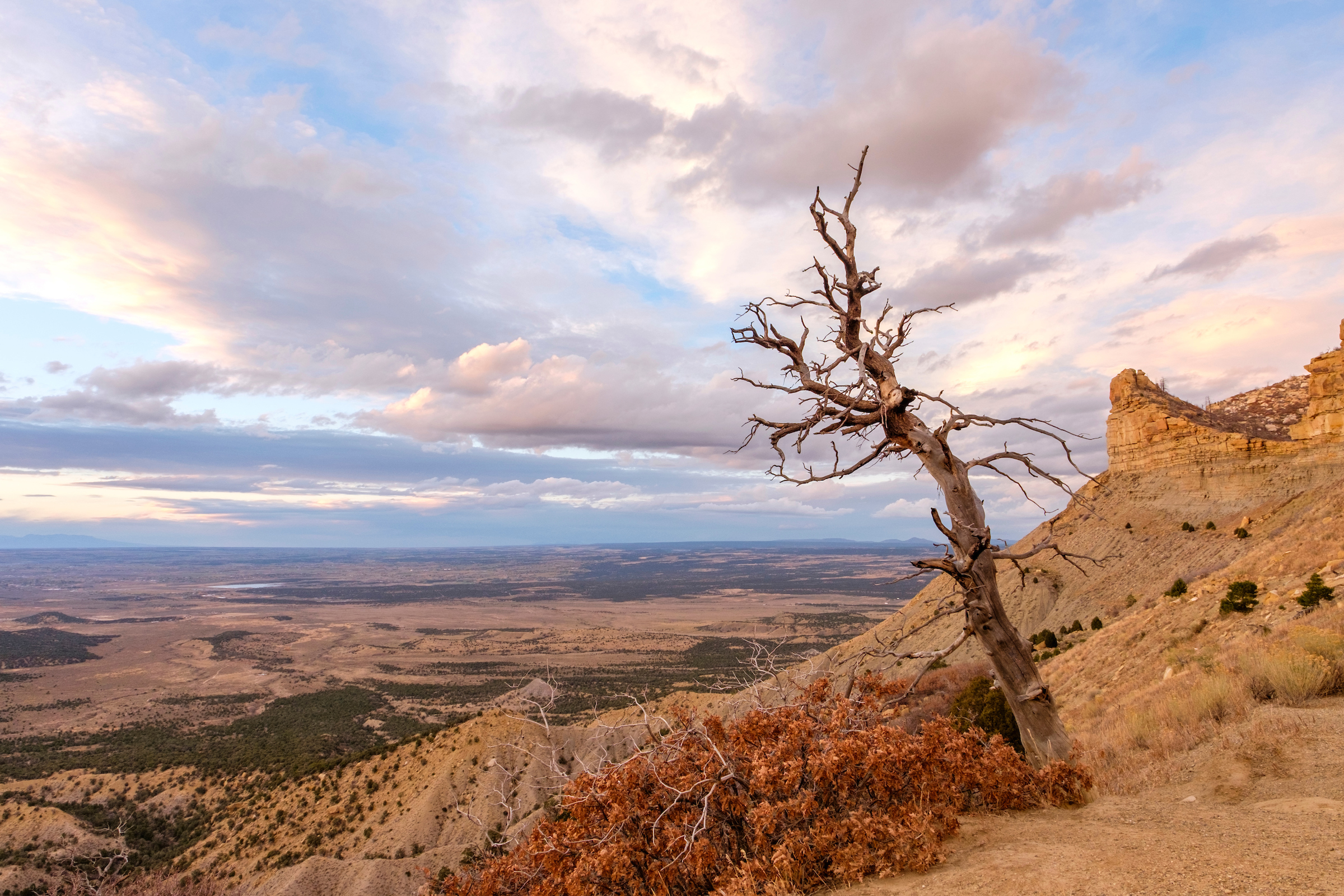 Descending the Mesa Top Loop Road at sunset wields stunning views.