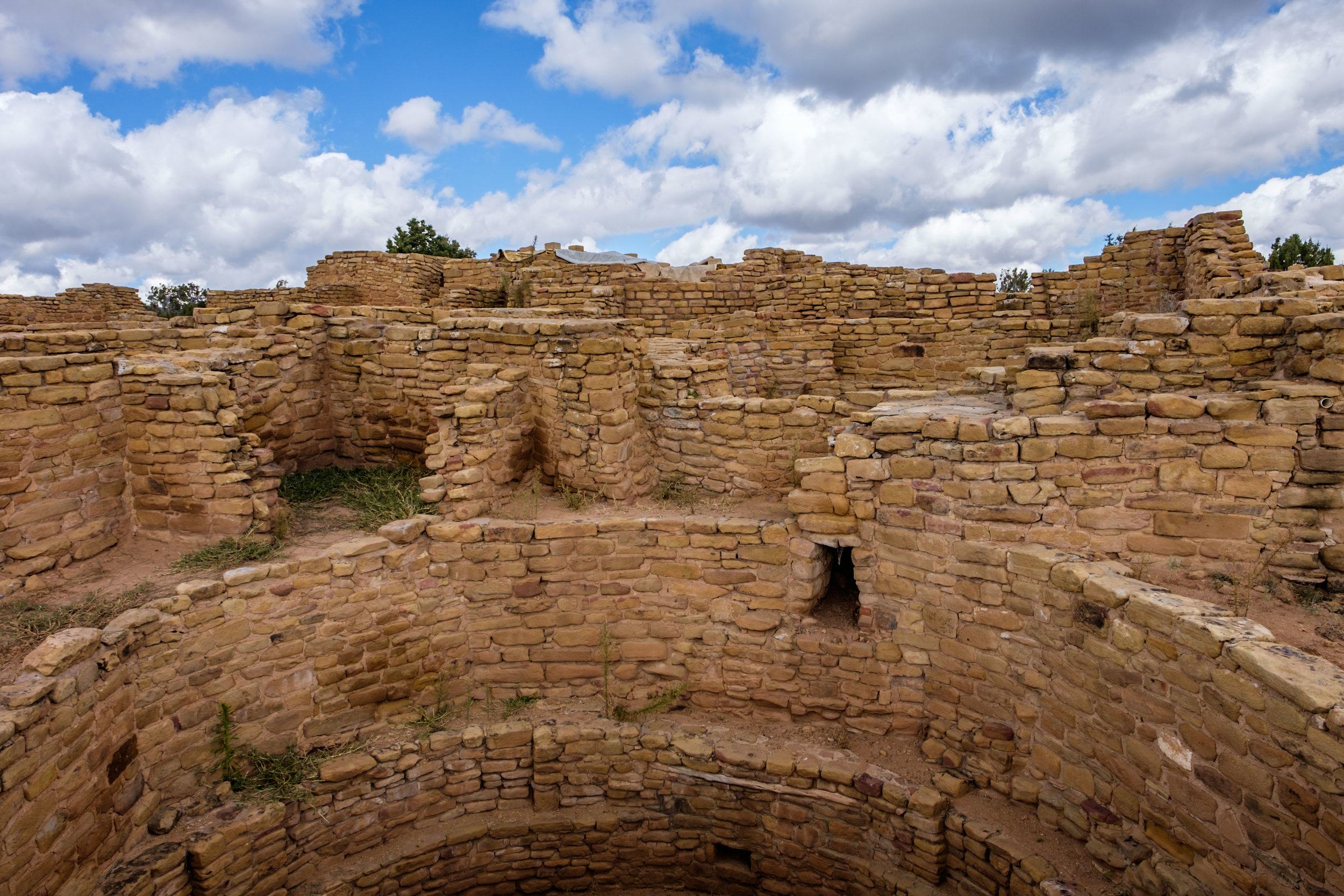 View into the kiva of one of the Far View Sites.
