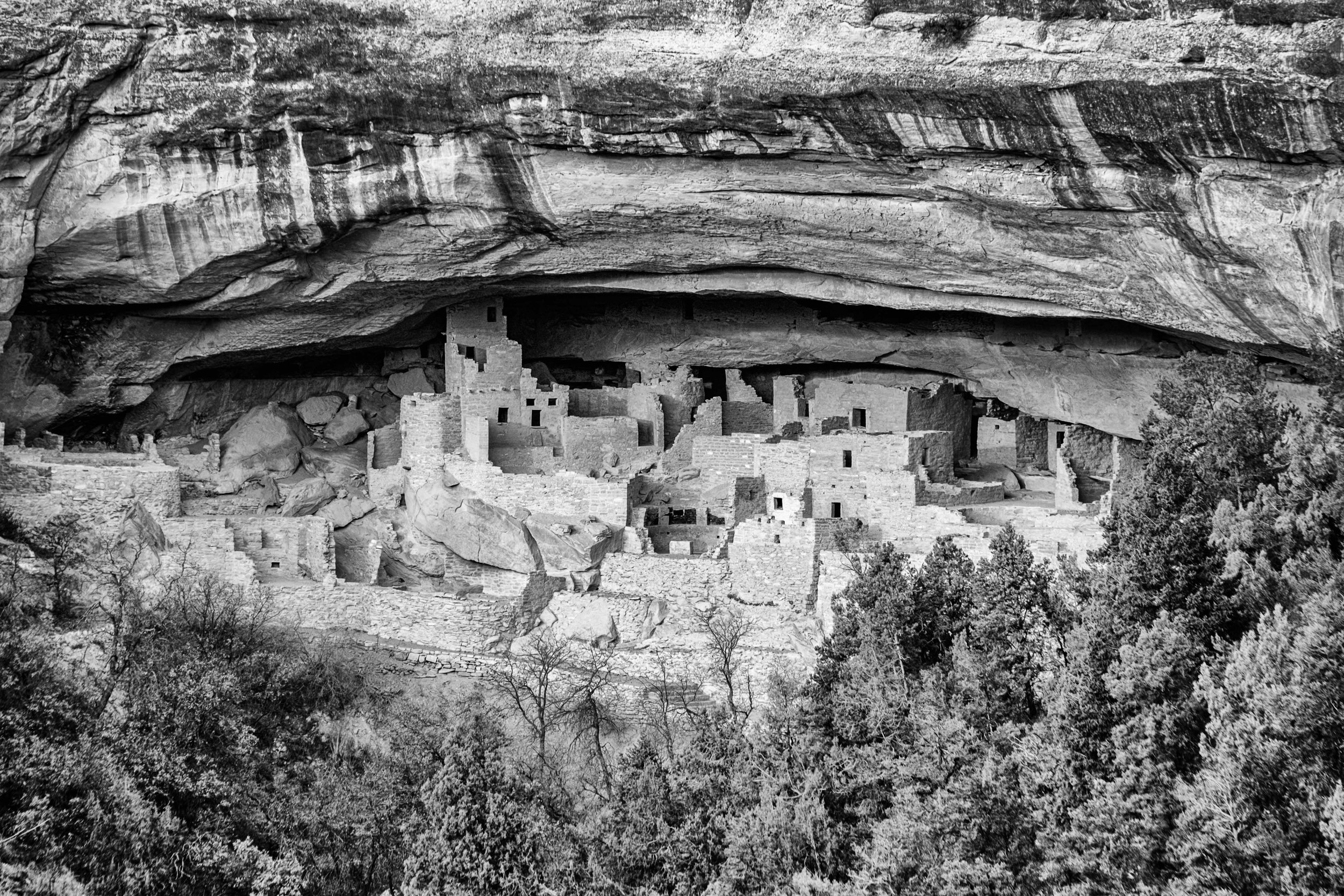 Cliff Palace contains nearly 200 rooms and 23 kivas and had a population of approximately 100 people