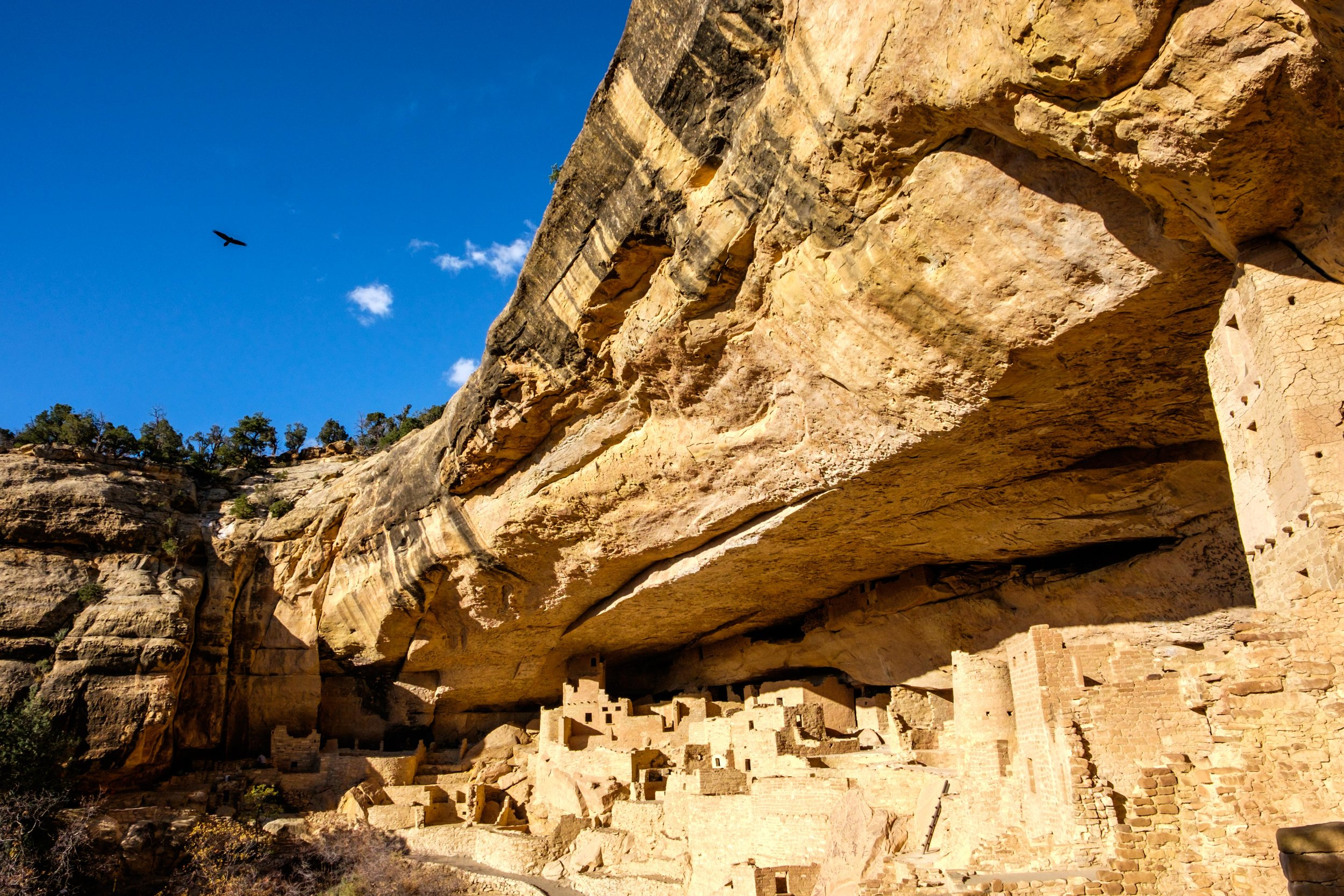 The raven flies overhead, a symbol of ancient Puebloan culture, and according to legend, a courier of magic.