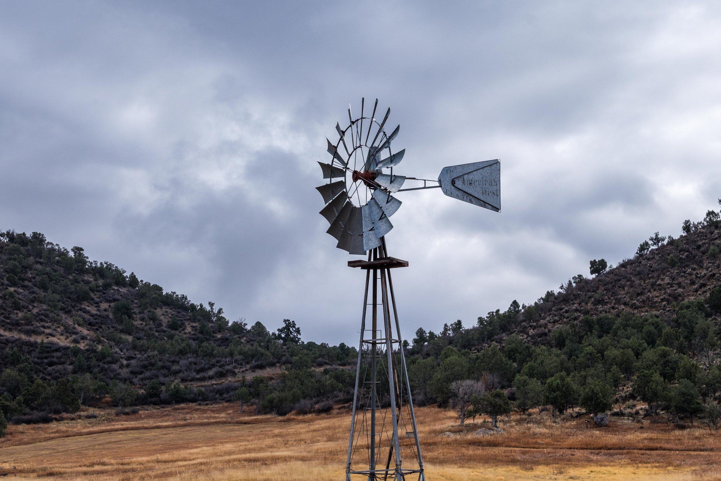 Stef finally got a photo of her windmill.